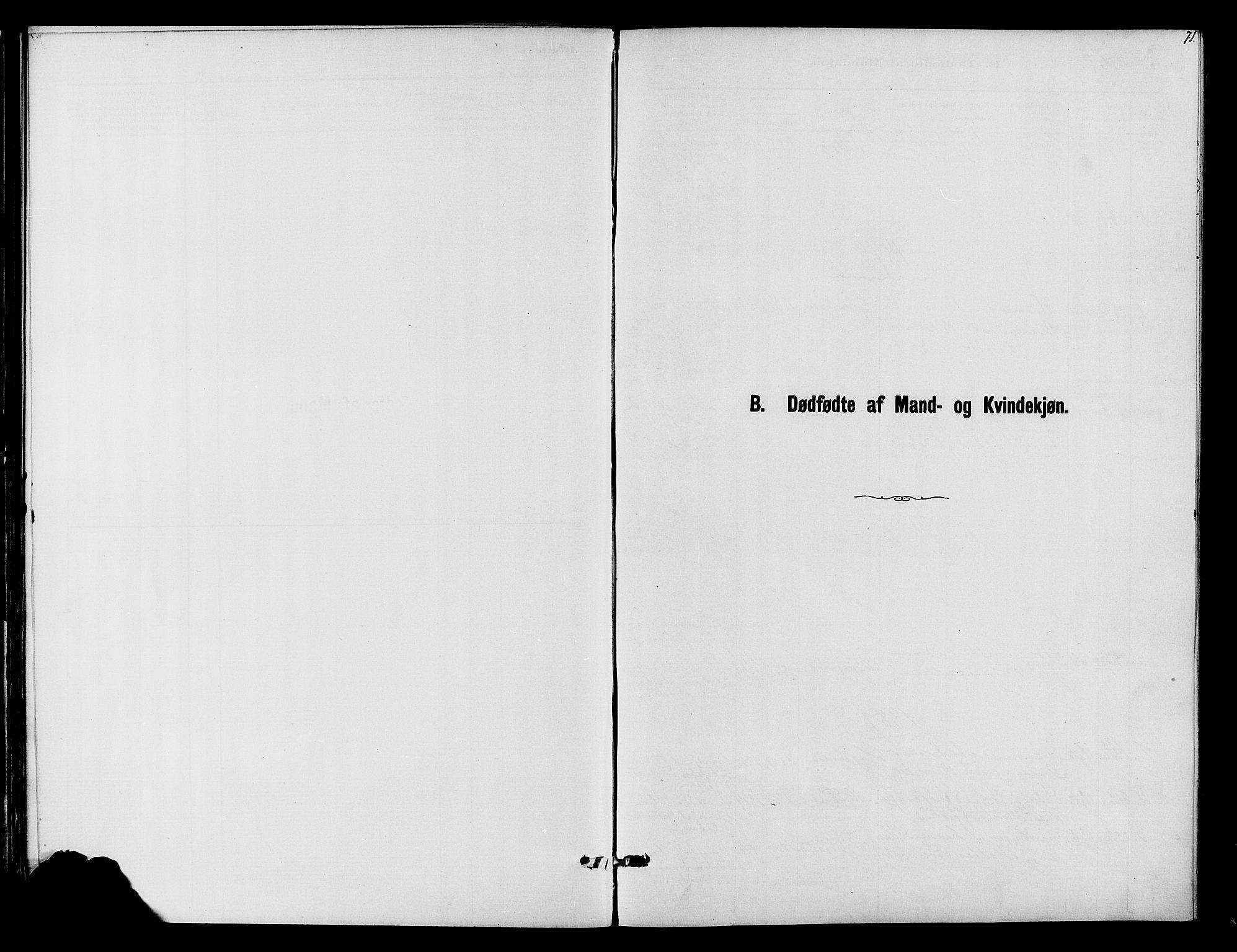 SAH, Vardal prestekontor, H/Ha/Haa/L0010: Ministerialbok nr. 10, 1878-1893, s. 71