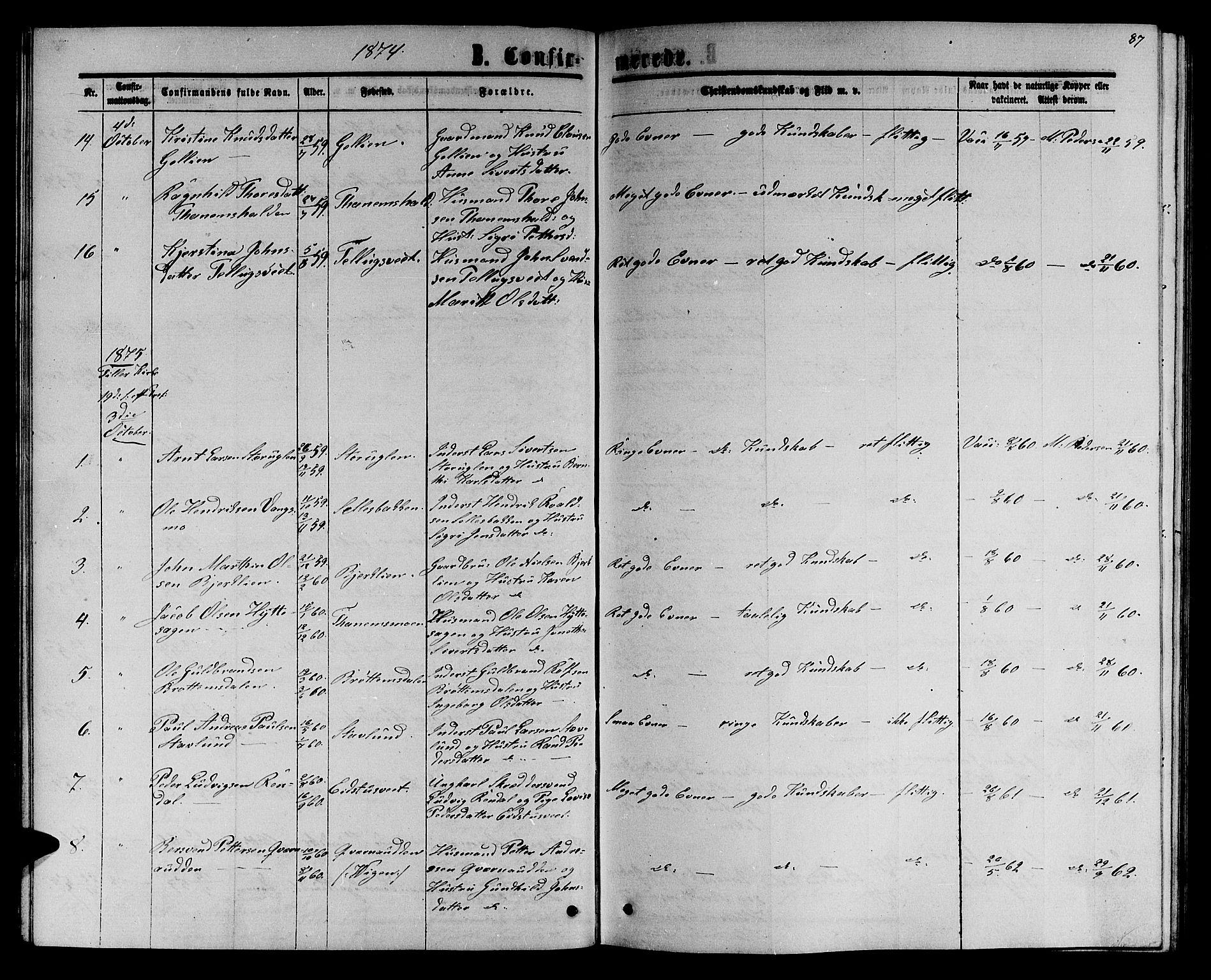 SAT, Ministerialprotokoller, klokkerbøker og fødselsregistre - Sør-Trøndelag, 618/L0451: Klokkerbok nr. 618C02, 1865-1883, s. 87