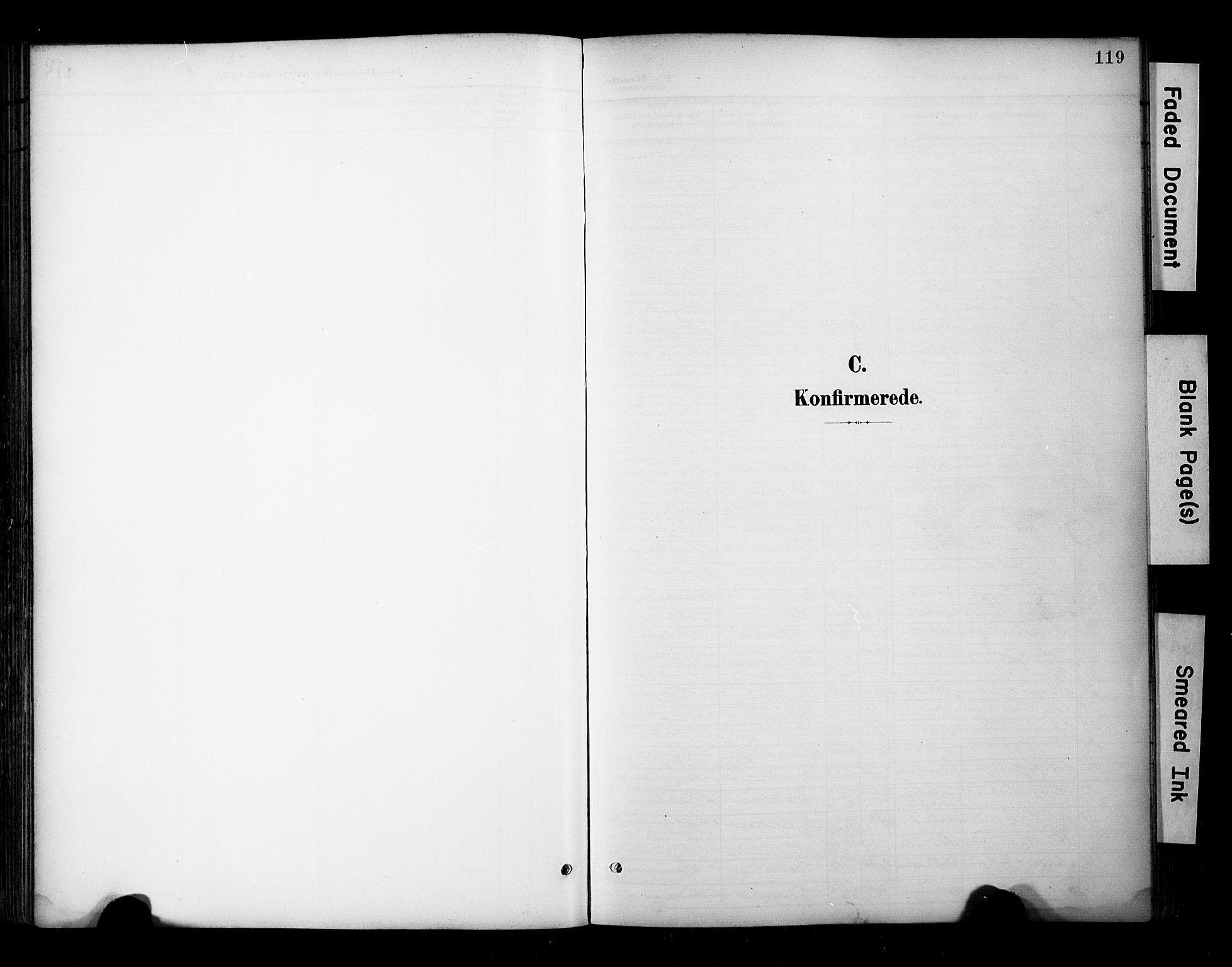 SAT, Ministerialprotokoller, klokkerbøker og fødselsregistre - Sør-Trøndelag, 681/L0936: Ministerialbok nr. 681A14, 1899-1908, s. 119