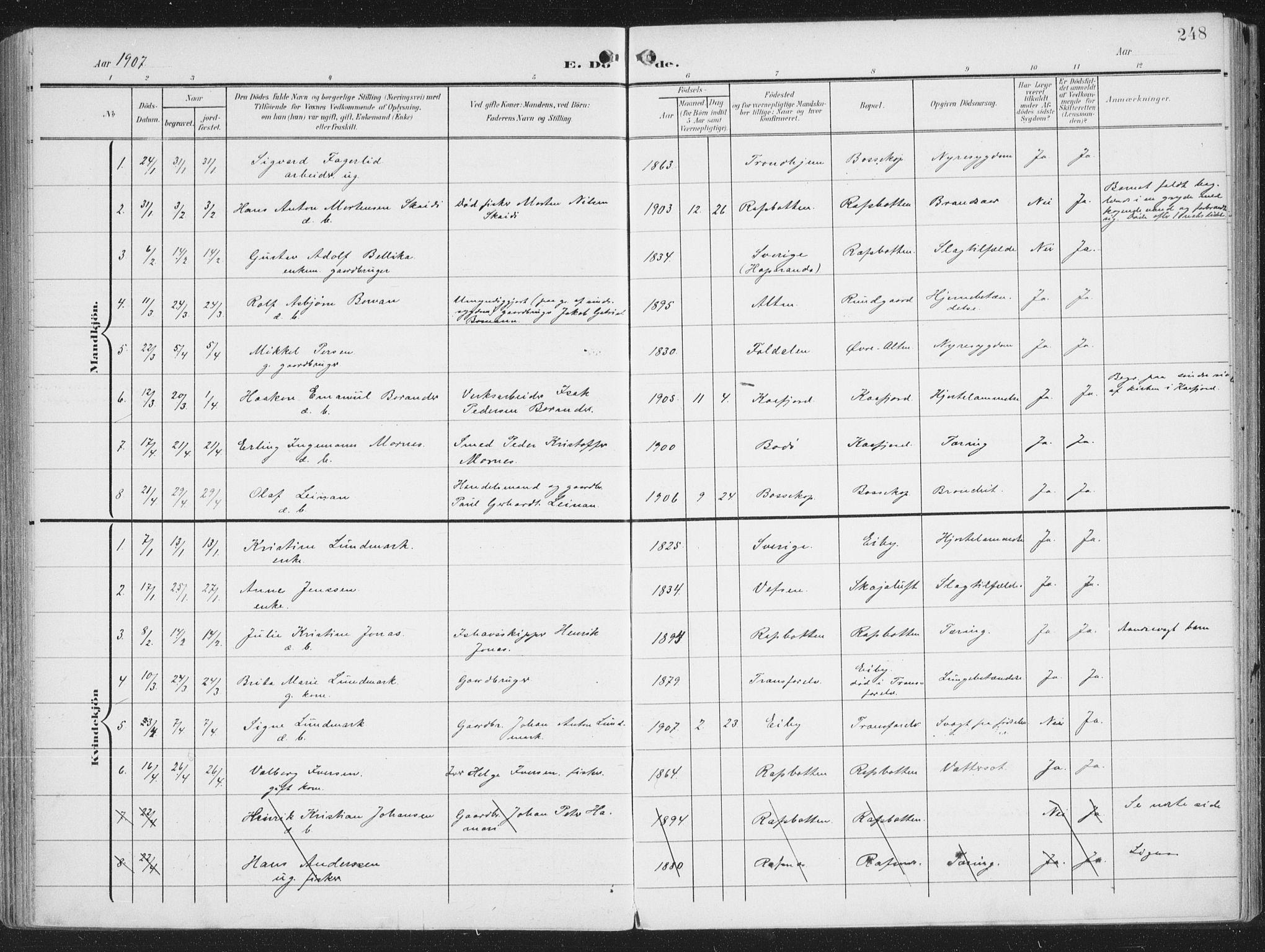 SATØ, Alta sokneprestembete, Ministerialbok nr. 5, 1904-1918, s. 248