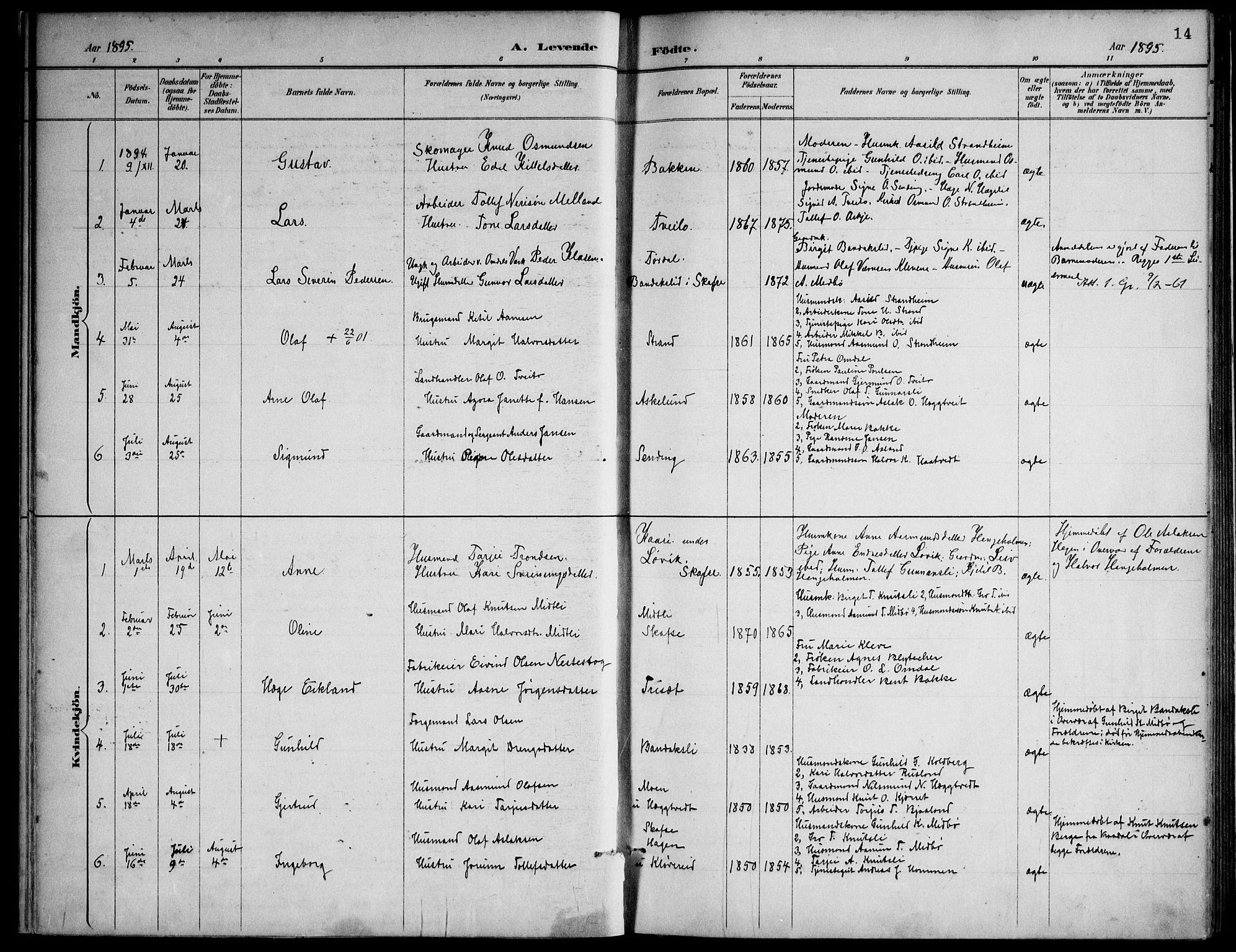 SAKO, Lårdal kirkebøker, F/Fa/L0007: Ministerialbok nr. I 7, 1887-1906, s. 14