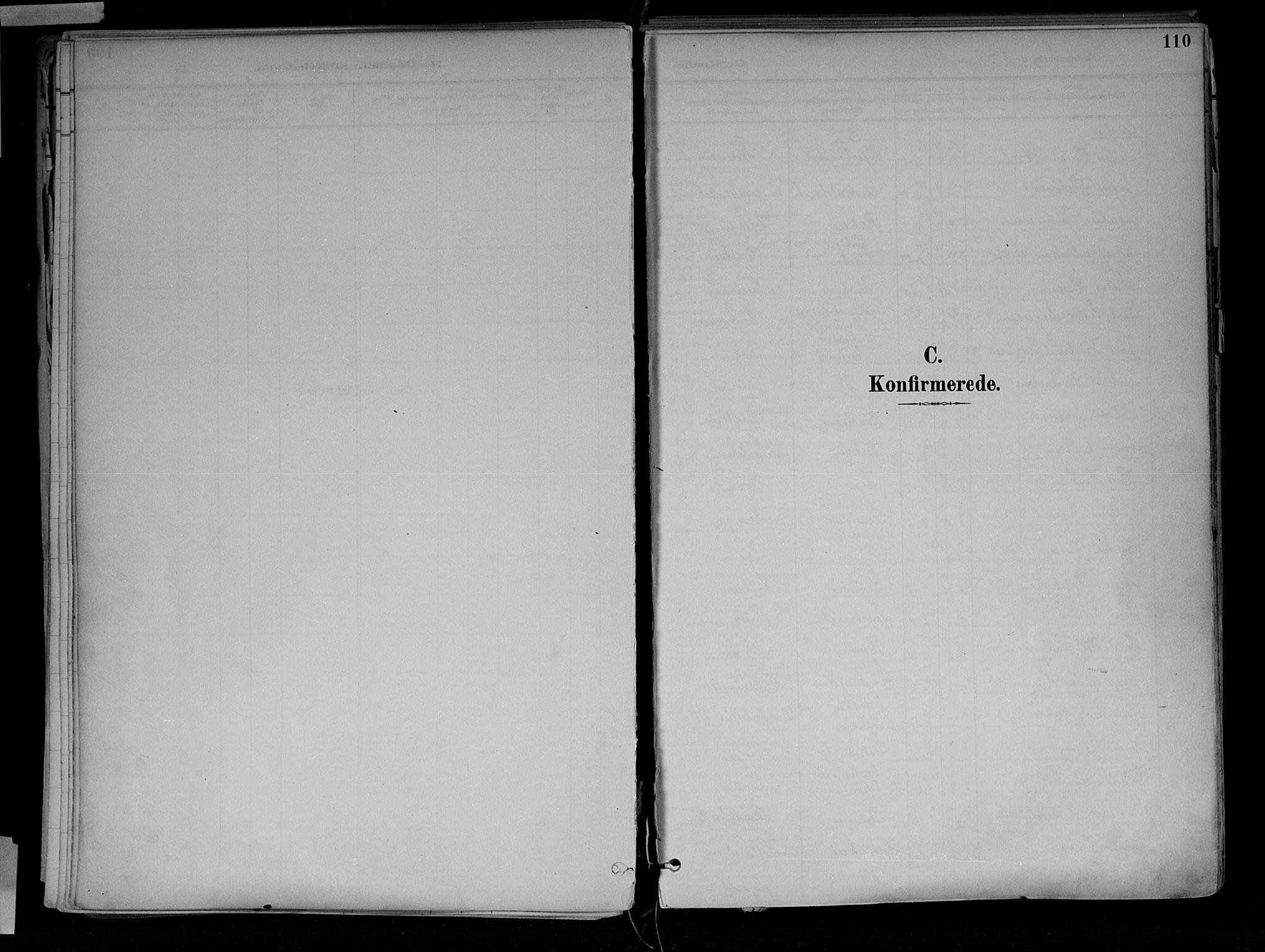 SAH, Jevnaker prestekontor, Ministerialbok nr. 10, 1891-1906, s. 110