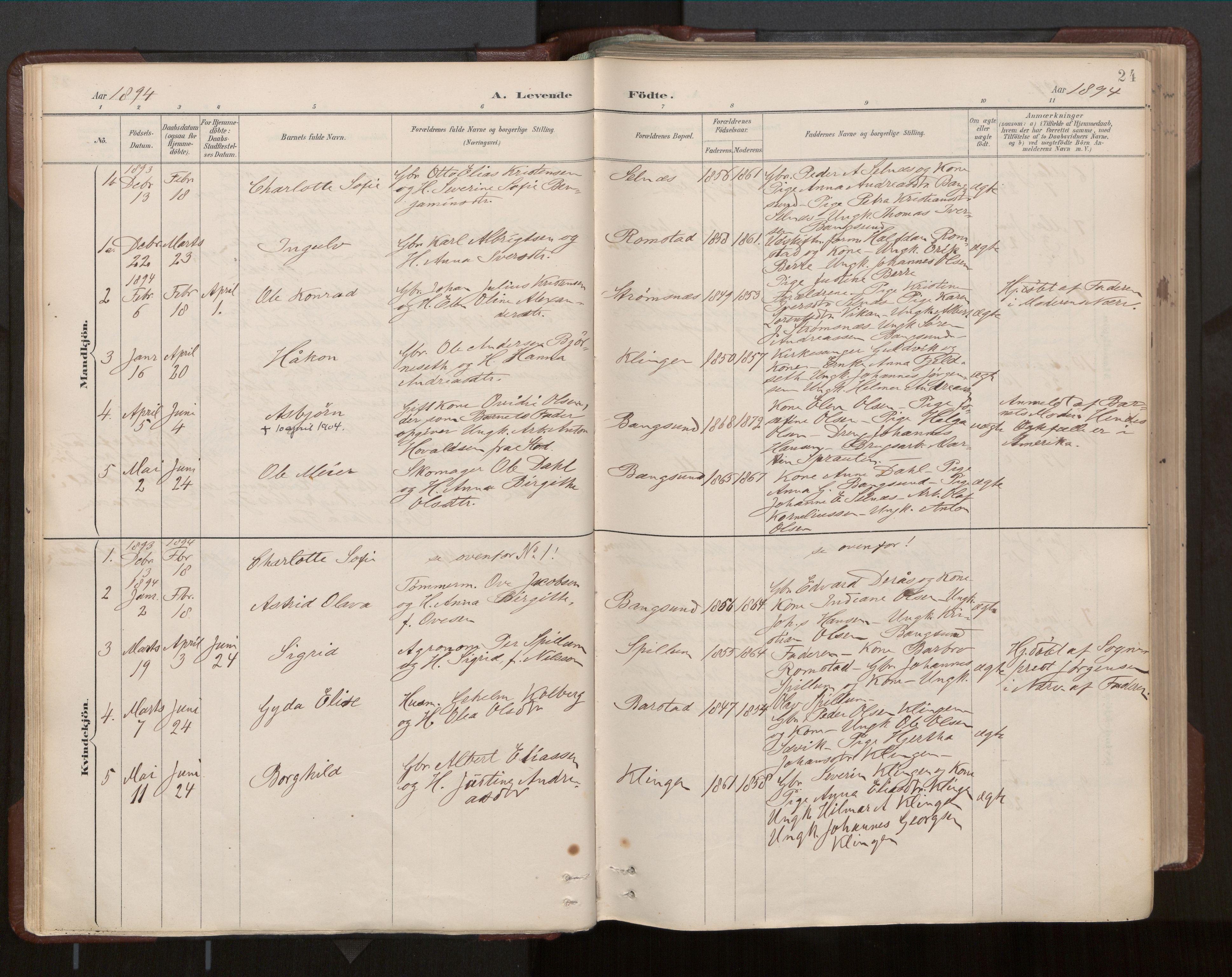 SAT, Ministerialprotokoller, klokkerbøker og fødselsregistre - Nord-Trøndelag, 770/L0589: Ministerialbok nr. 770A03, 1887-1929, s. 24