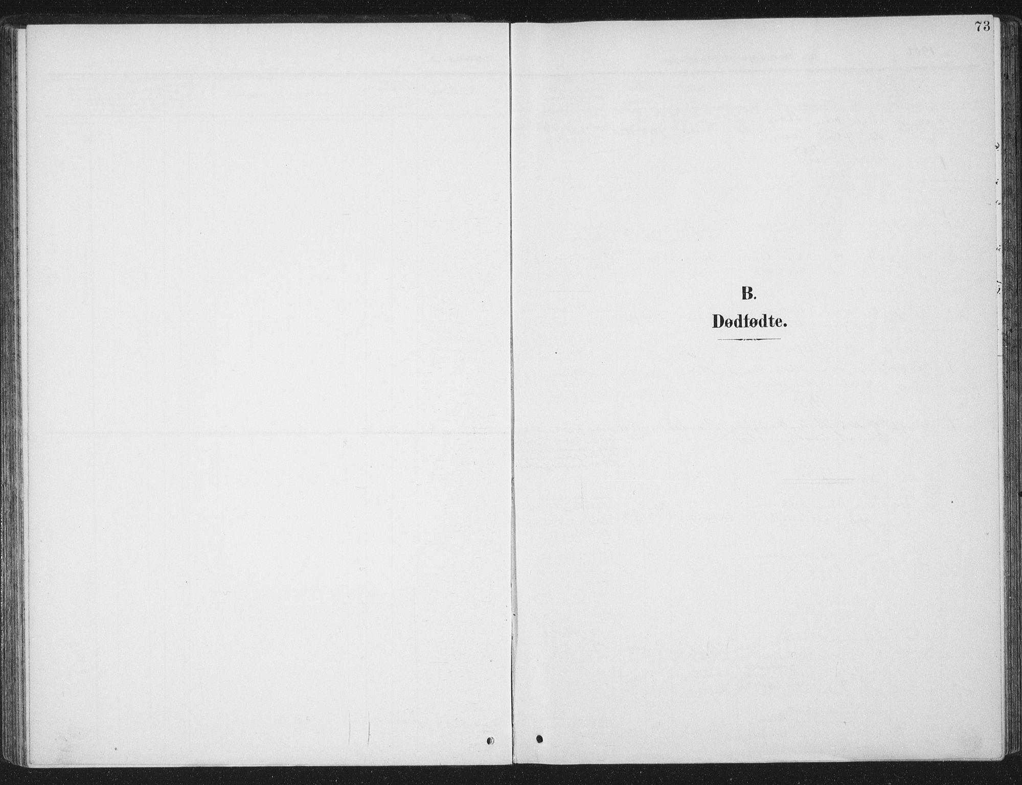 SAT, Ministerialprotokoller, klokkerbøker og fødselsregistre - Sør-Trøndelag, 657/L0709: Ministerialbok nr. 657A10, 1905-1919, s. 73
