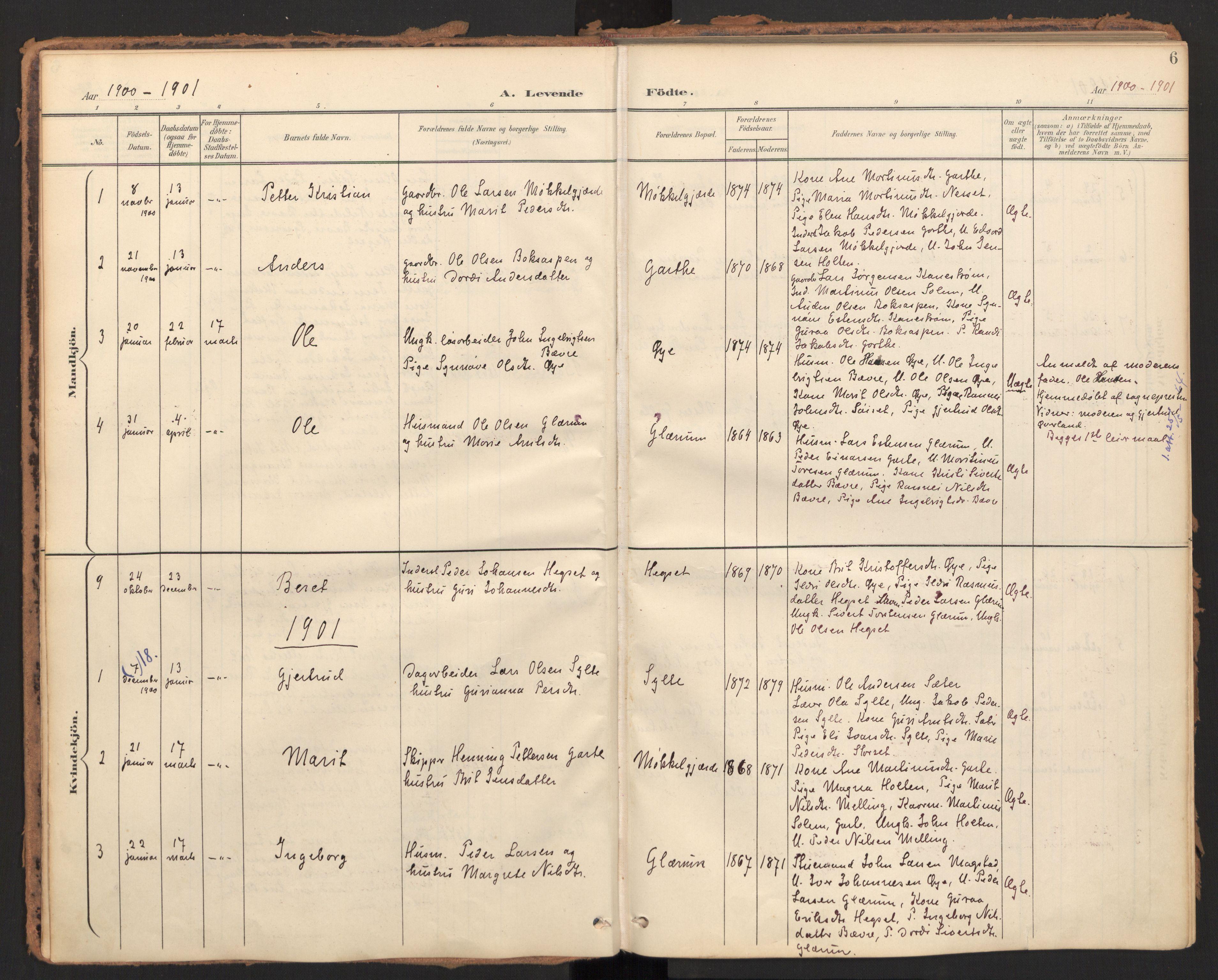 SAT, Ministerialprotokoller, klokkerbøker og fødselsregistre - Møre og Romsdal, 595/L1048: Ministerialbok nr. 595A10, 1900-1917, s. 6