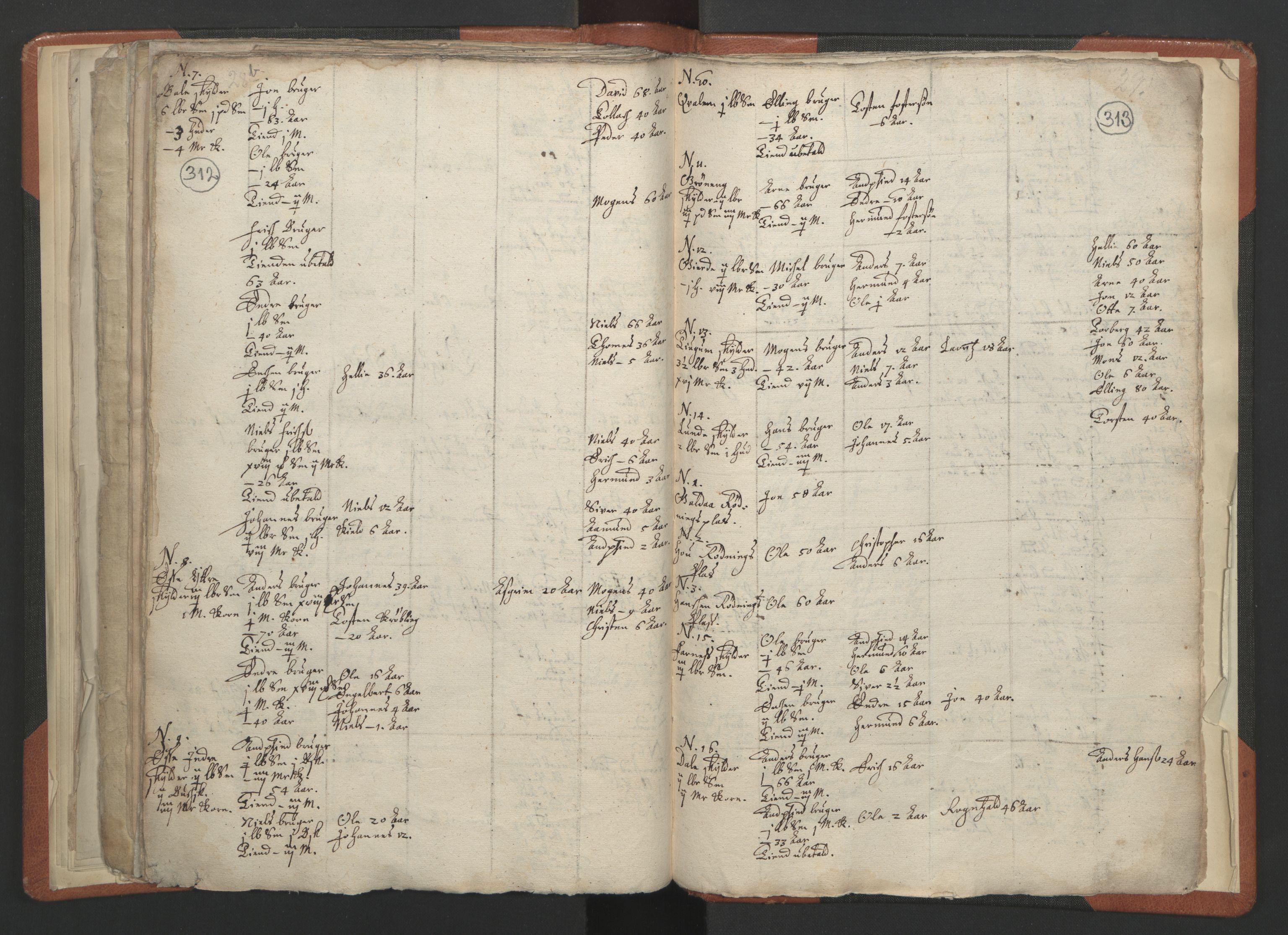 RA, Sogneprestenes manntall 1664-1666, nr. 23: Sogn prosti, 1664-1666, s. 312-313