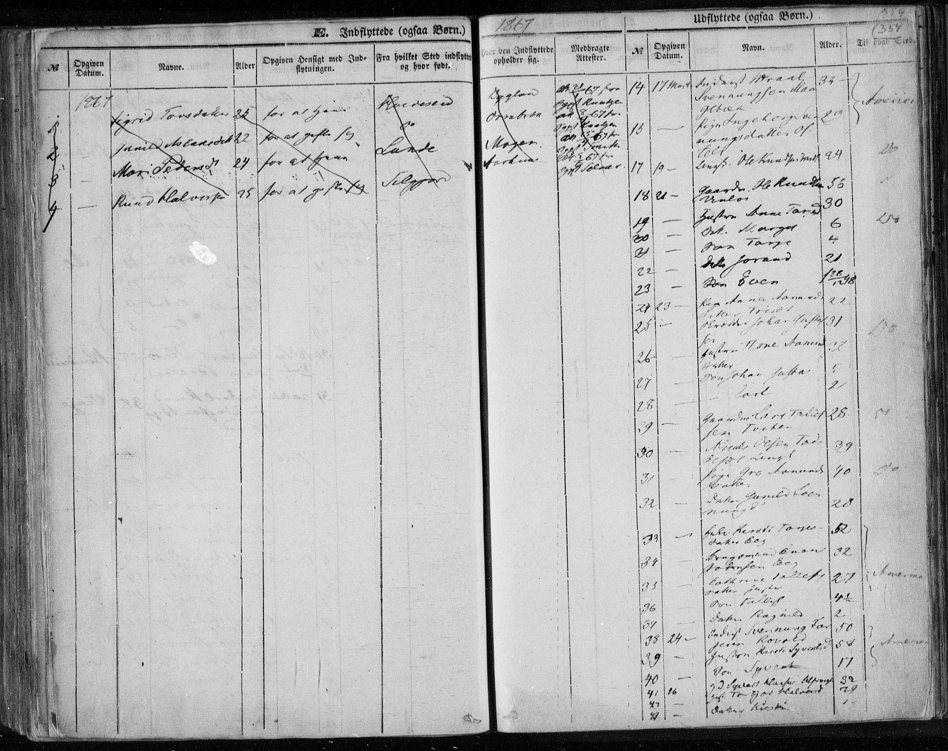 SAKO, Lårdal kirkebøker, F/Fa/L0006: Ministerialbok nr. I 6, 1861-1886, s. 354