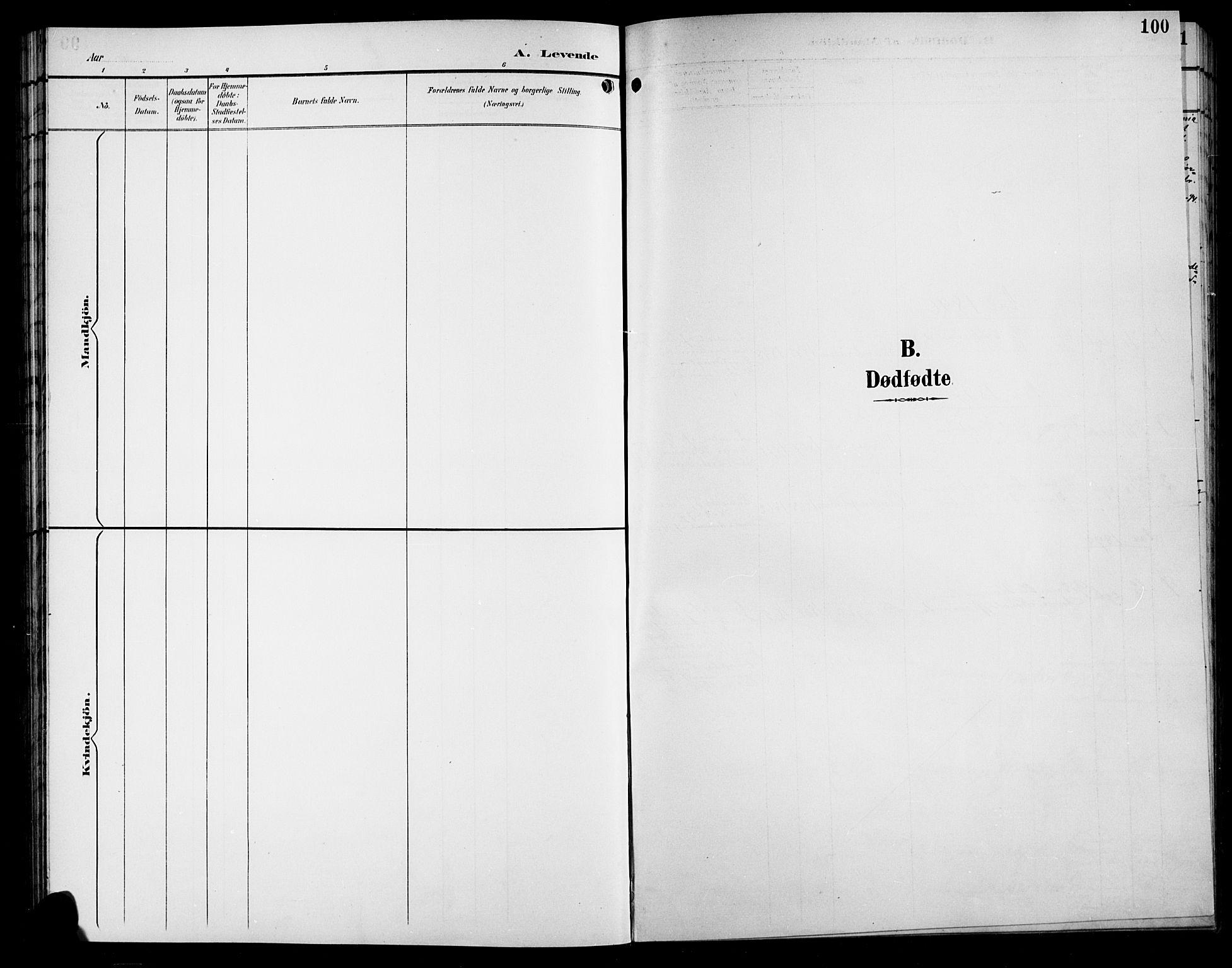 SAH, Sør-Aurdal prestekontor, Klokkerbok nr. 9, 1894-1924, s. 100