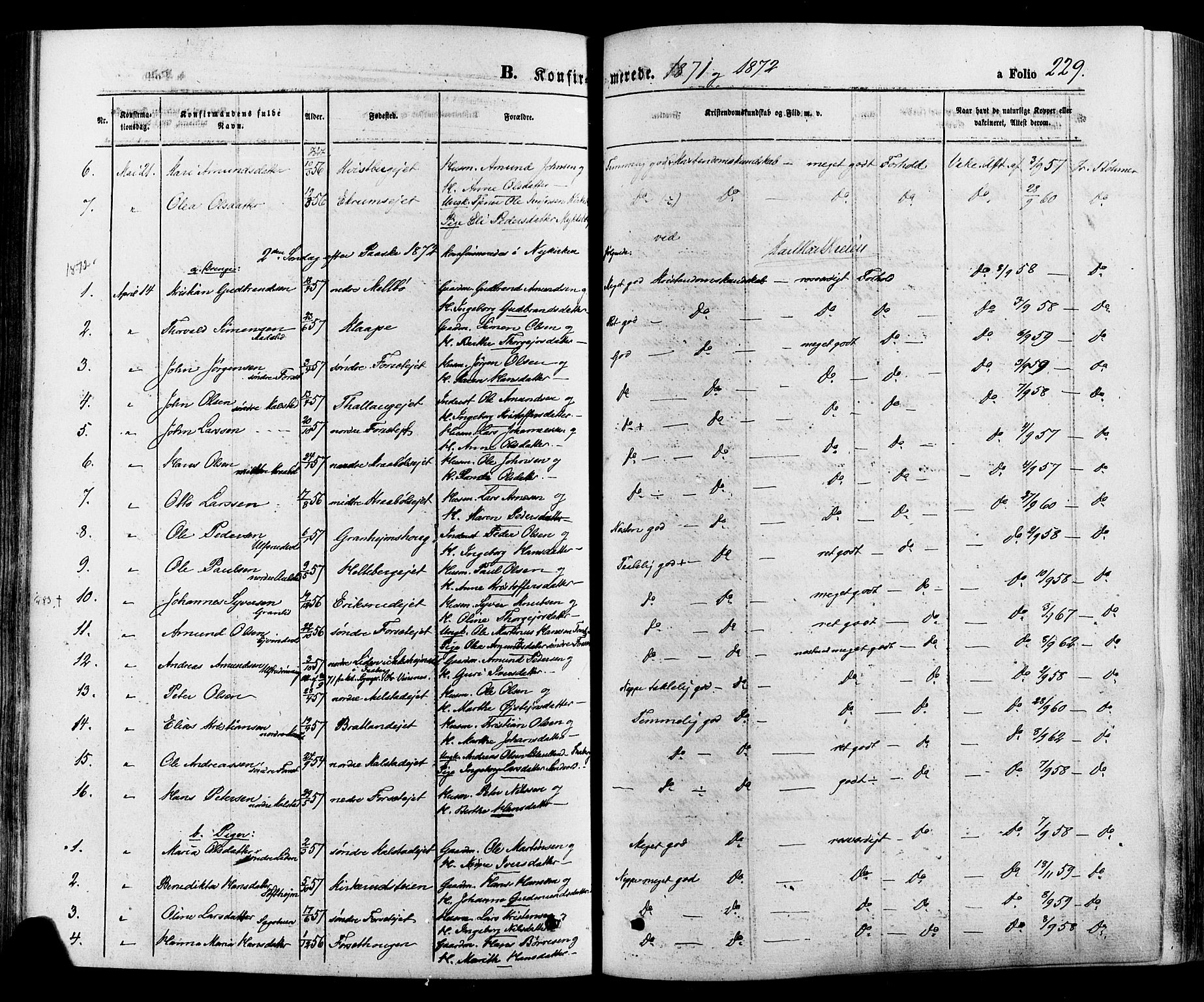 SAH, Gausdal prestekontor, Ministerialbok nr. 10, 1867-1886, s. 229