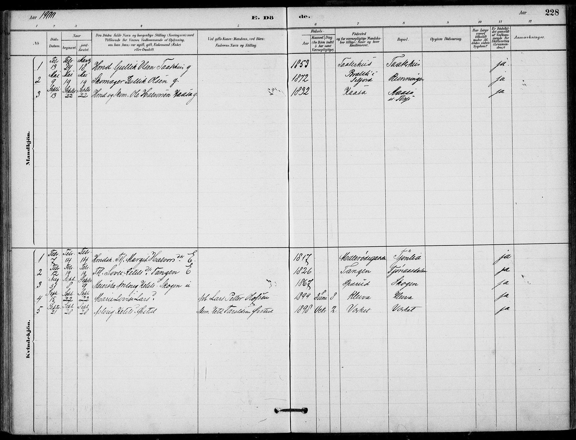SAKO, Hjartdal kirkebøker, F/Fb/L0002: Ministerialbok nr. II 2, 1880-1932, s. 228