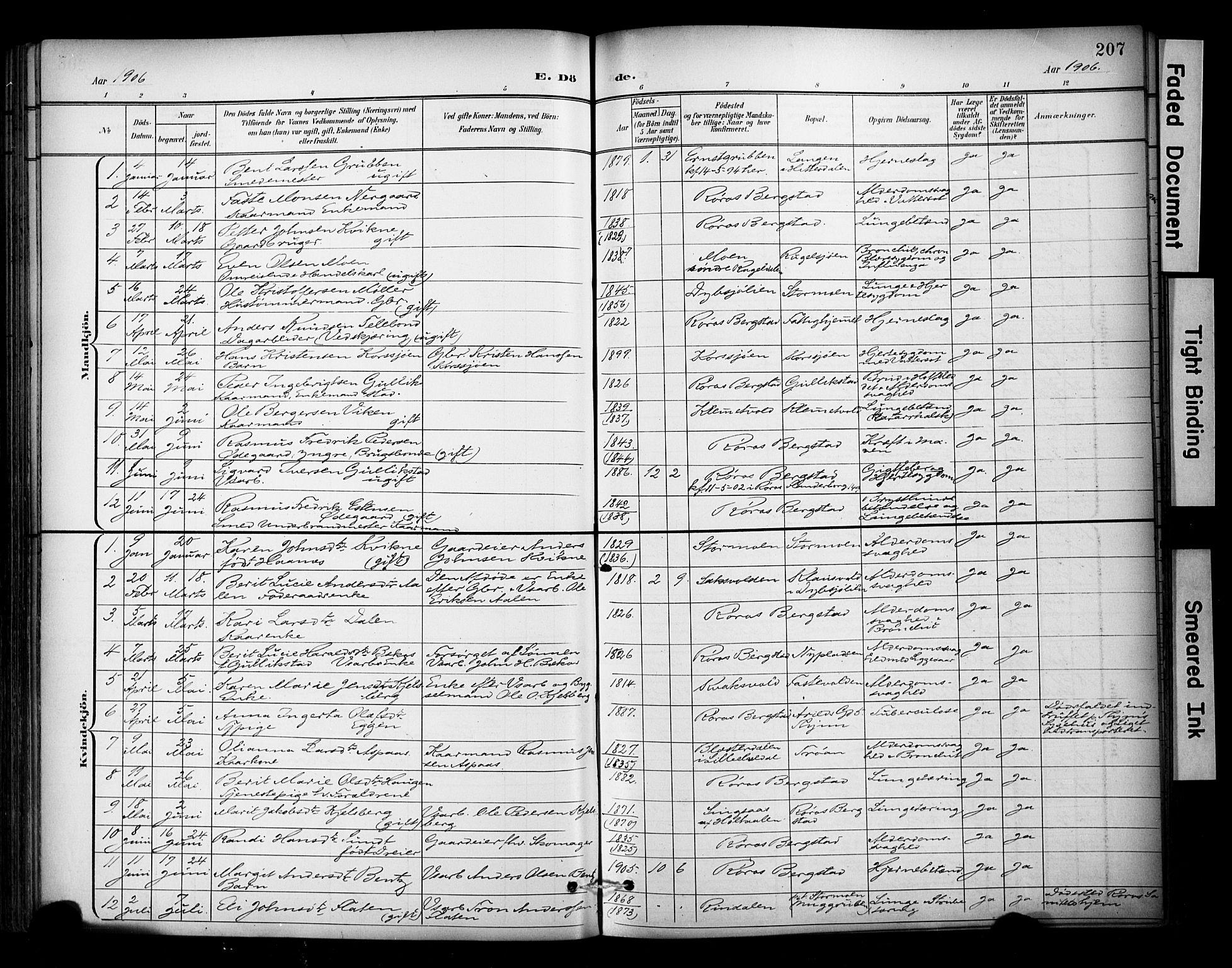 SAT, Ministerialprotokoller, klokkerbøker og fødselsregistre - Sør-Trøndelag, 681/L0936: Ministerialbok nr. 681A14, 1899-1908, s. 207