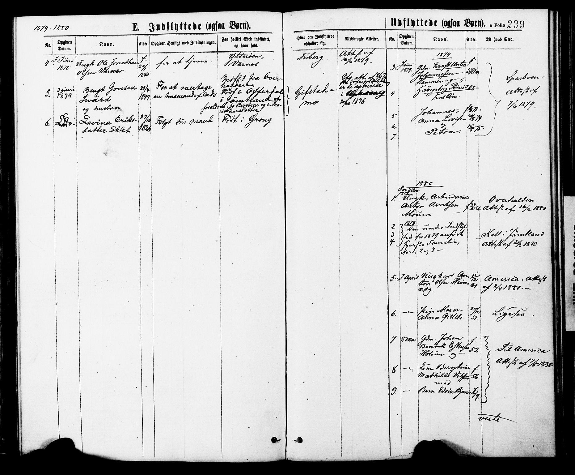 SAT, Ministerialprotokoller, klokkerbøker og fødselsregistre - Nord-Trøndelag, 749/L0473: Ministerialbok nr. 749A07, 1873-1887, s. 239