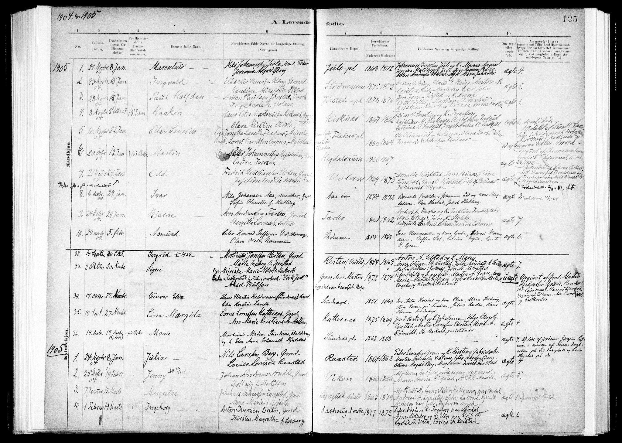 SAT, Ministerialprotokoller, klokkerbøker og fødselsregistre - Nord-Trøndelag, 730/L0285: Ministerialbok nr. 730A10, 1879-1914, s. 125