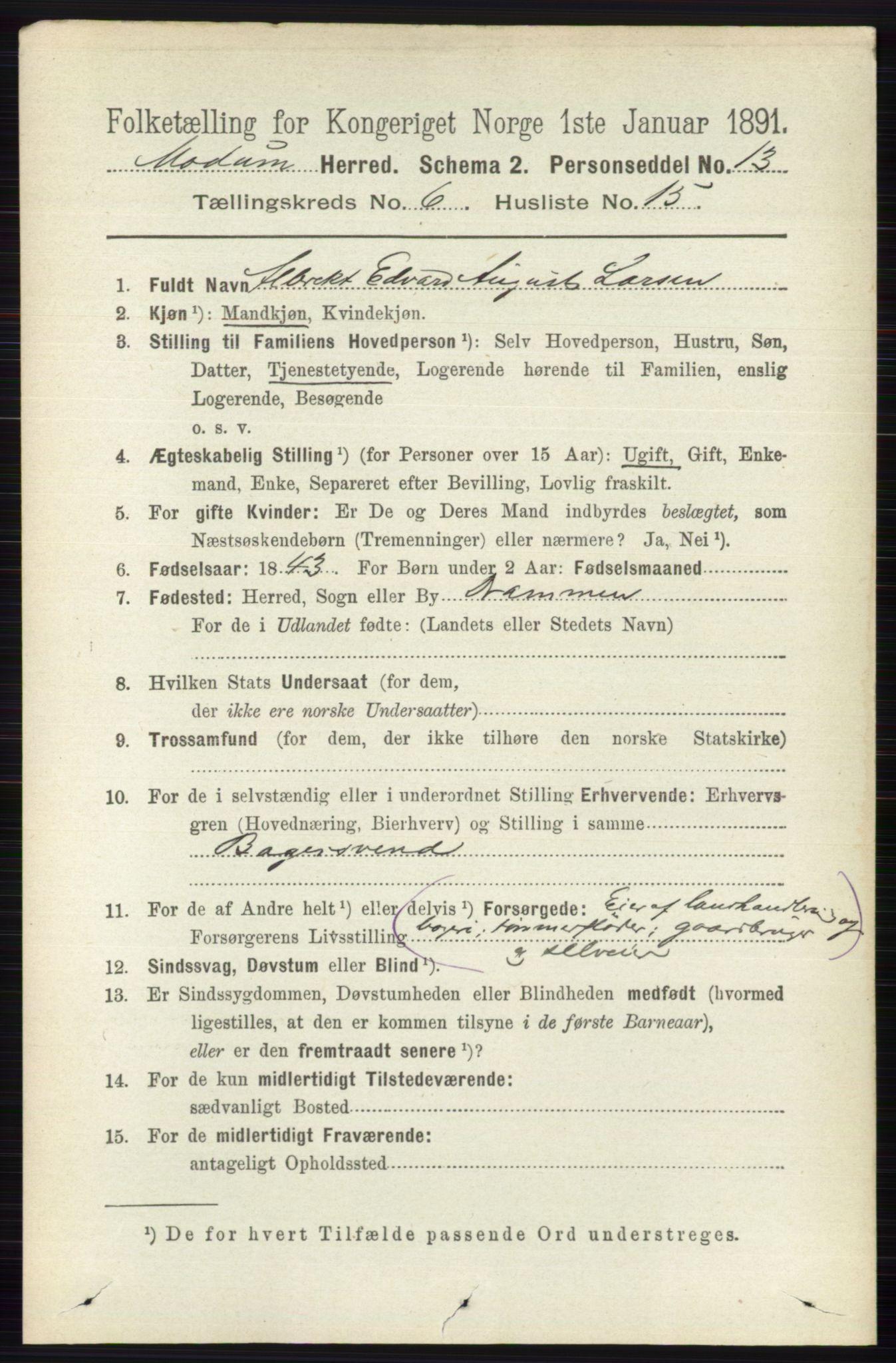 RA, Folketelling 1891 for 0623 Modum herred, 1891, s. 2247