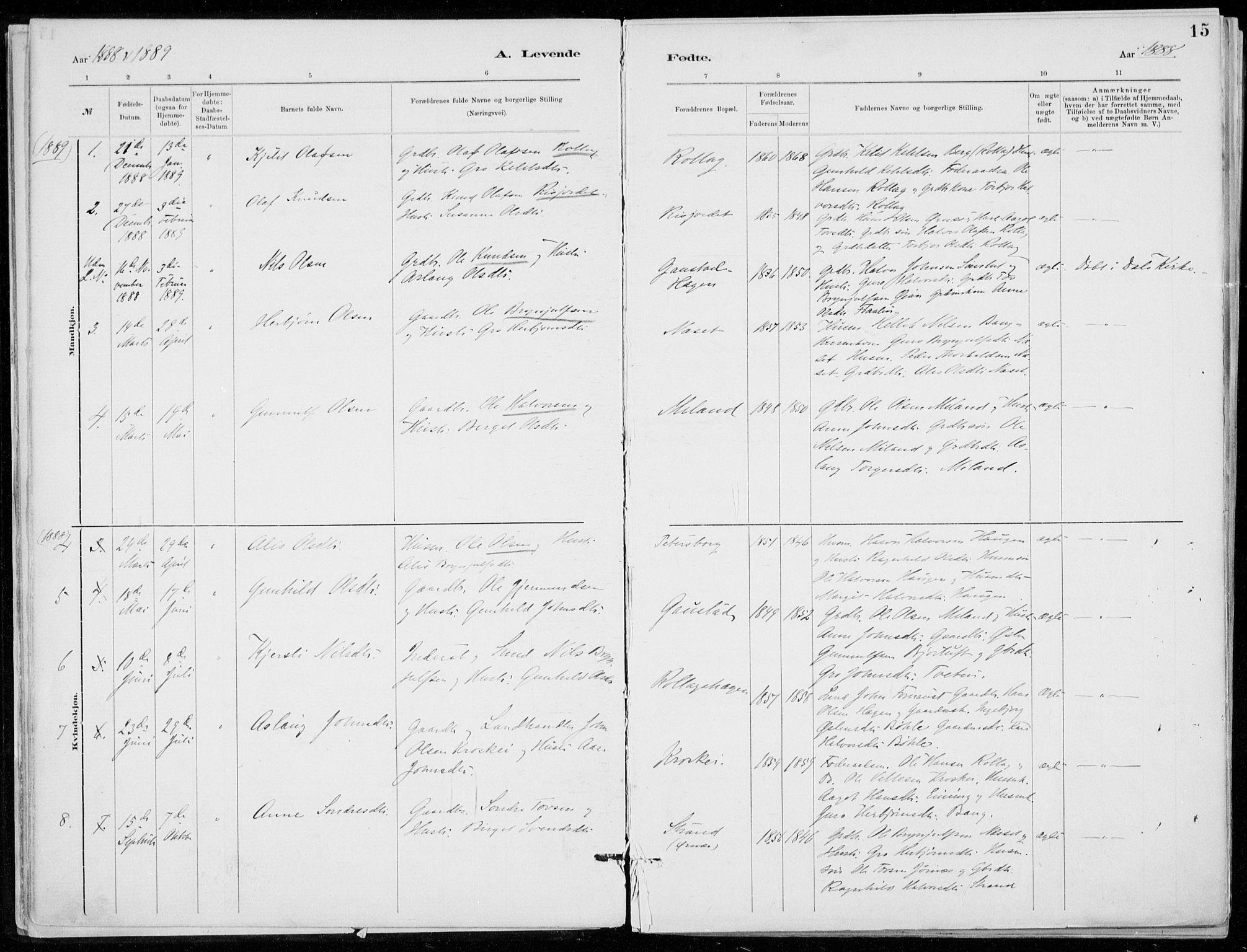 SAKO, Tinn kirkebøker, F/Fb/L0002: Ministerialbok nr. II 2, 1878-1917, s. 15