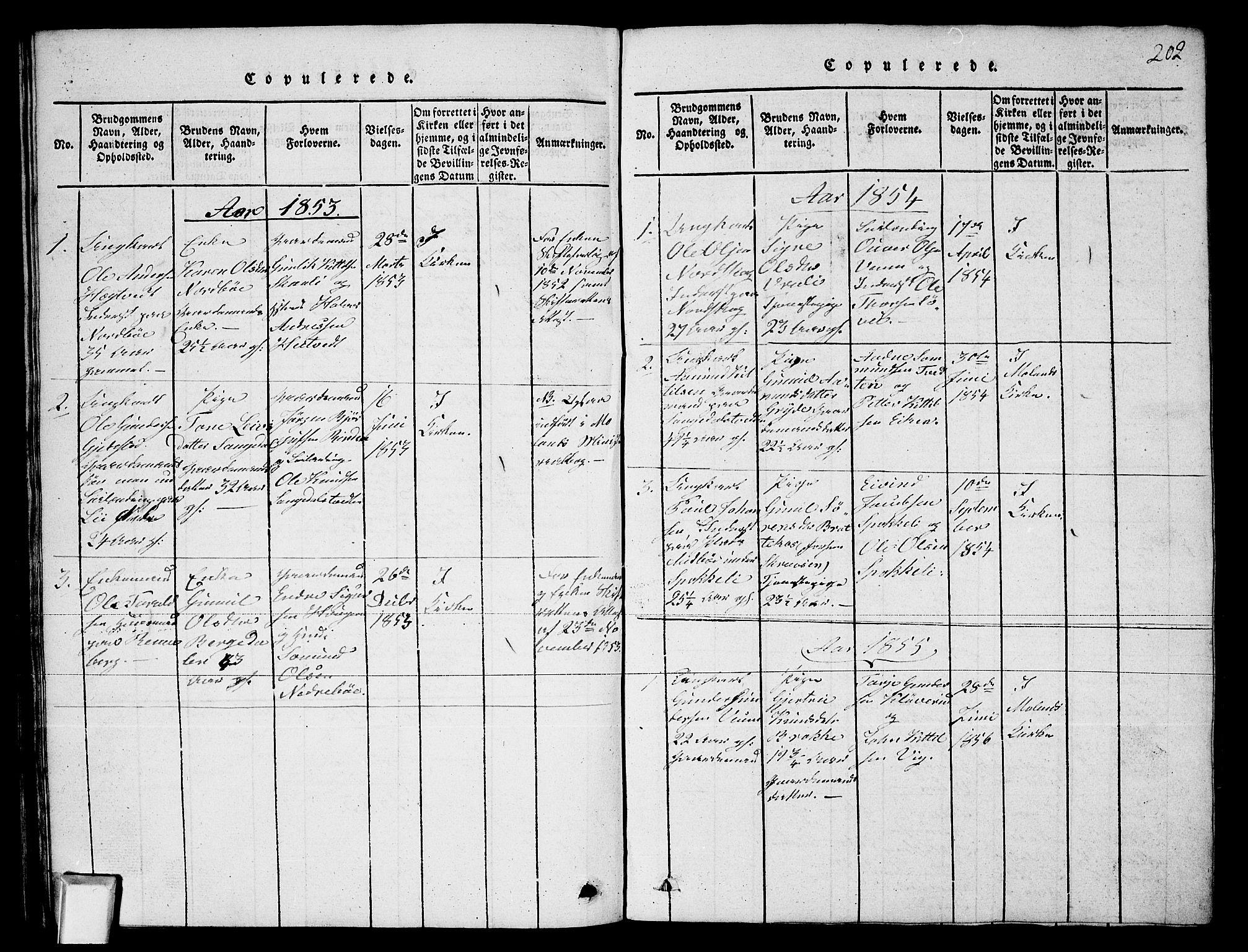 SAKO, Fyresdal kirkebøker, G/Ga/L0003: Klokkerbok nr. I 3, 1815-1863, s. 202