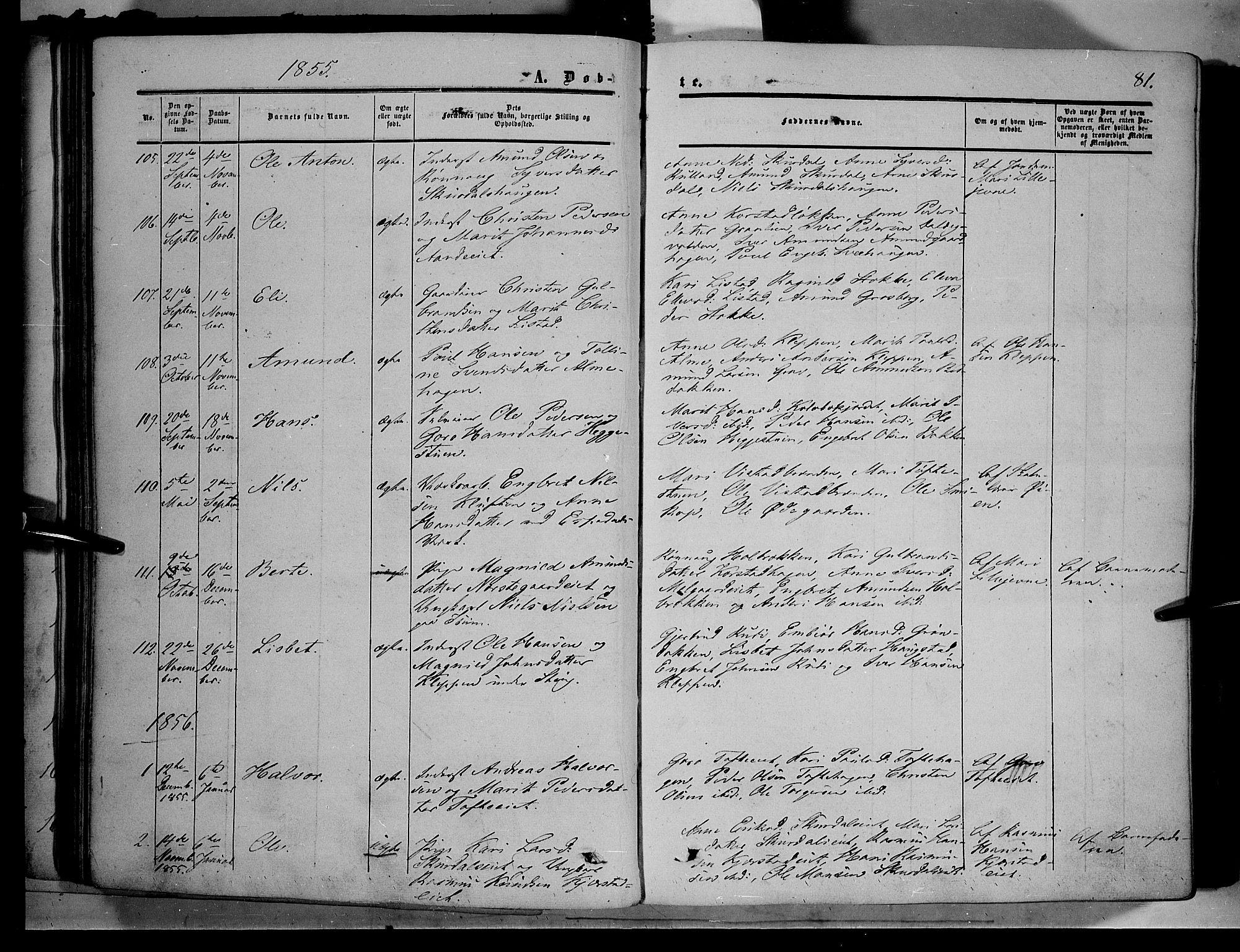 SAH, Sør-Fron prestekontor, H/Ha/Haa/L0001: Ministerialbok nr. 1, 1849-1863, s. 81