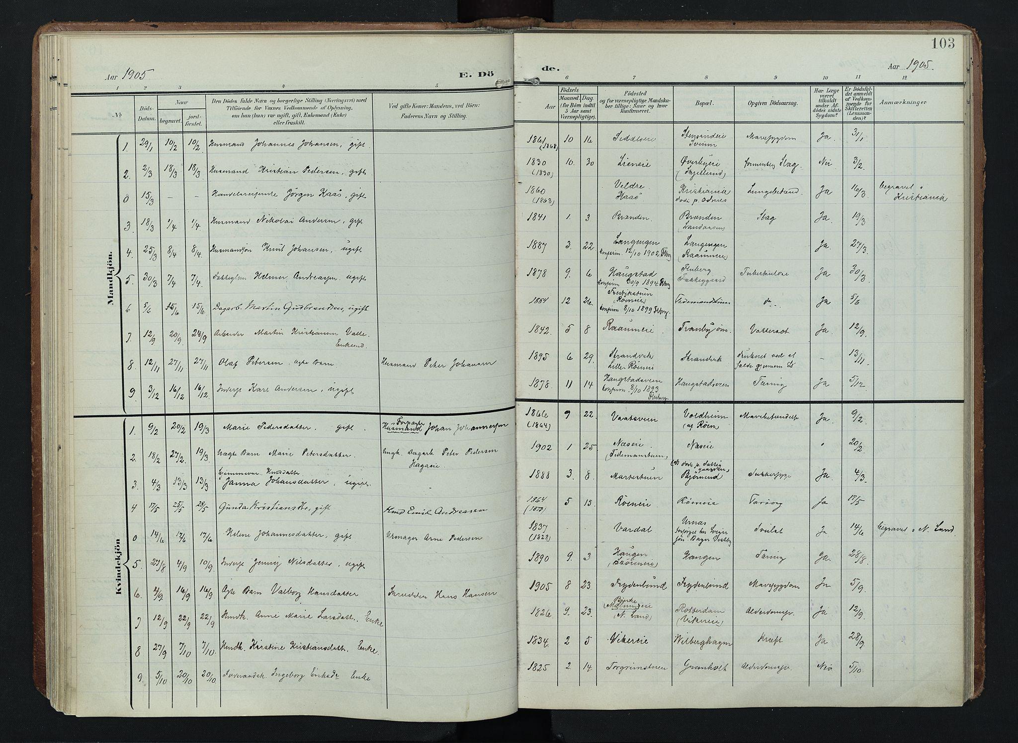 SAH, Søndre Land prestekontor, K/L0005: Ministerialbok nr. 5, 1905-1914, s. 103