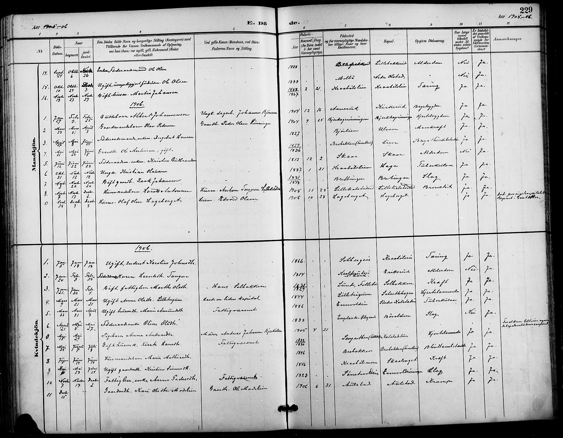 SAH, Vestre Gausdal prestekontor, Klokkerbok nr. 3, 1896-1925, s. 229