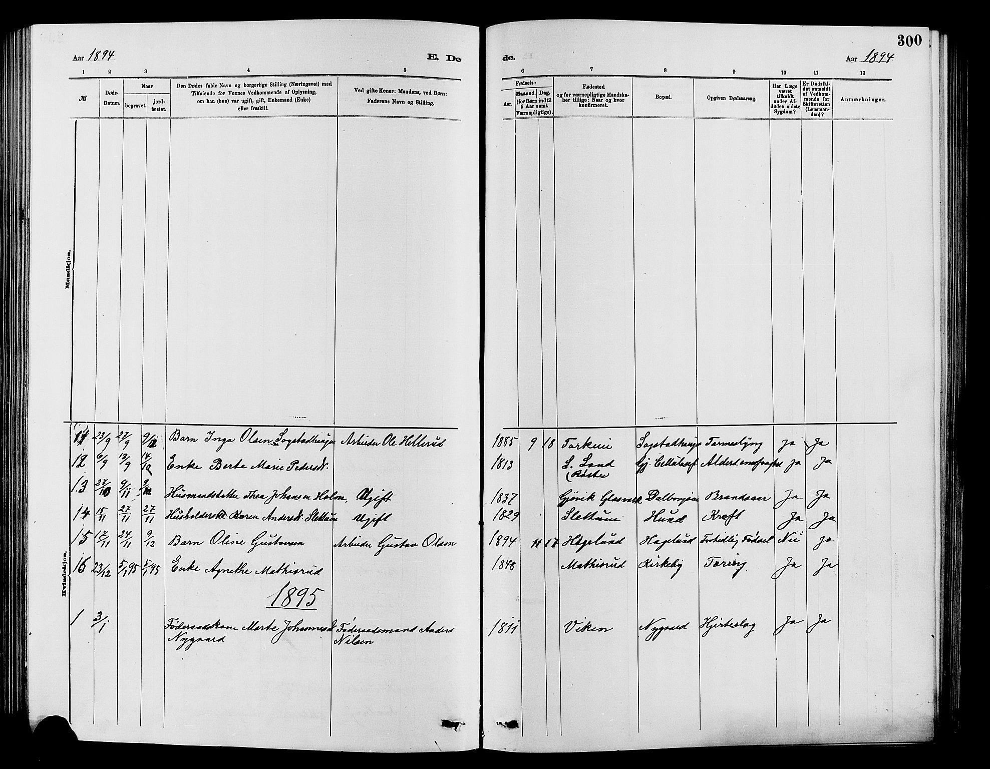 SAH, Vardal prestekontor, H/Ha/Hab/L0007: Klokkerbok nr. 7 /1, 1881-1895, s. 300