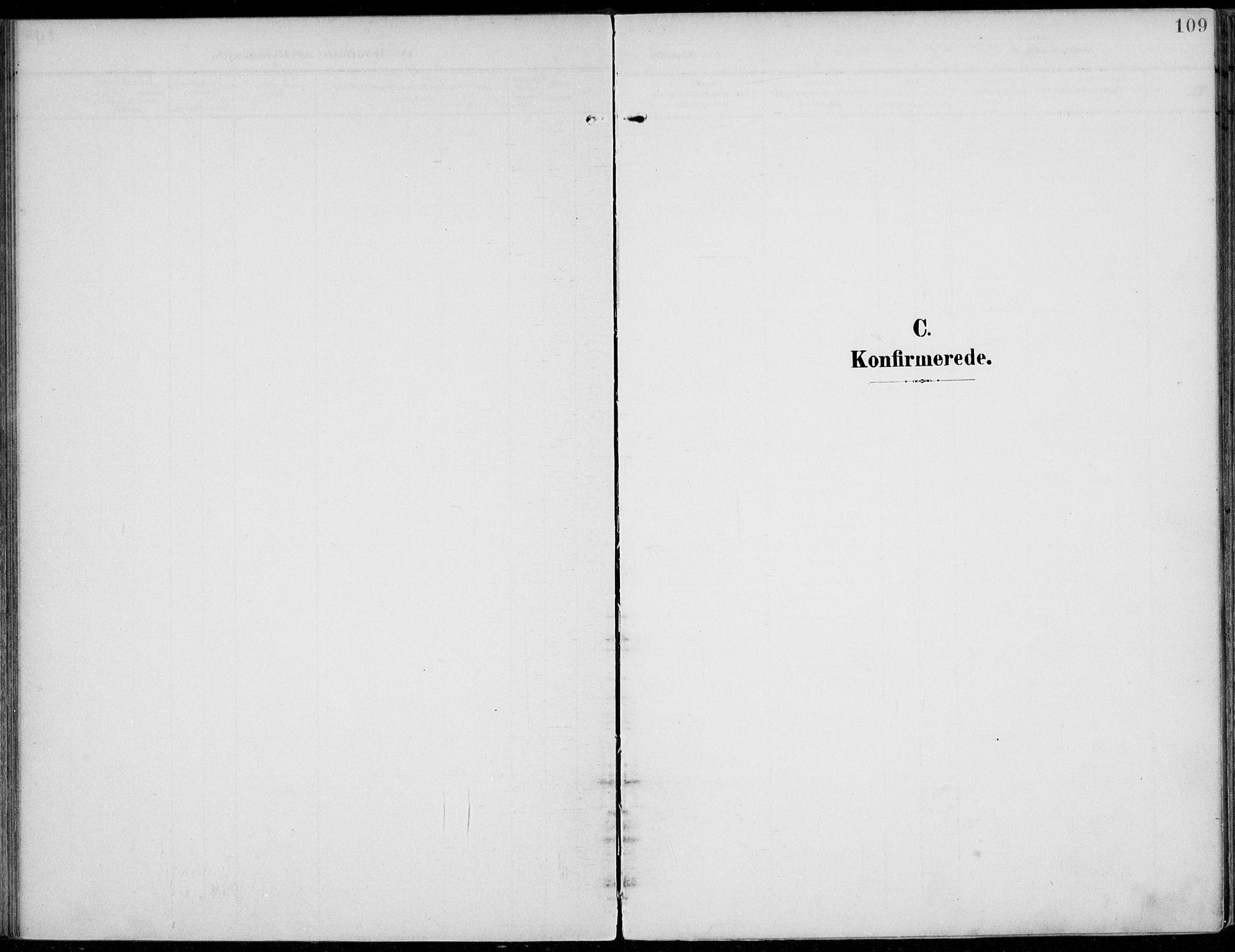 SAH, Jevnaker prestekontor, Ministerialbok nr. 11, 1902-1913, s. 109