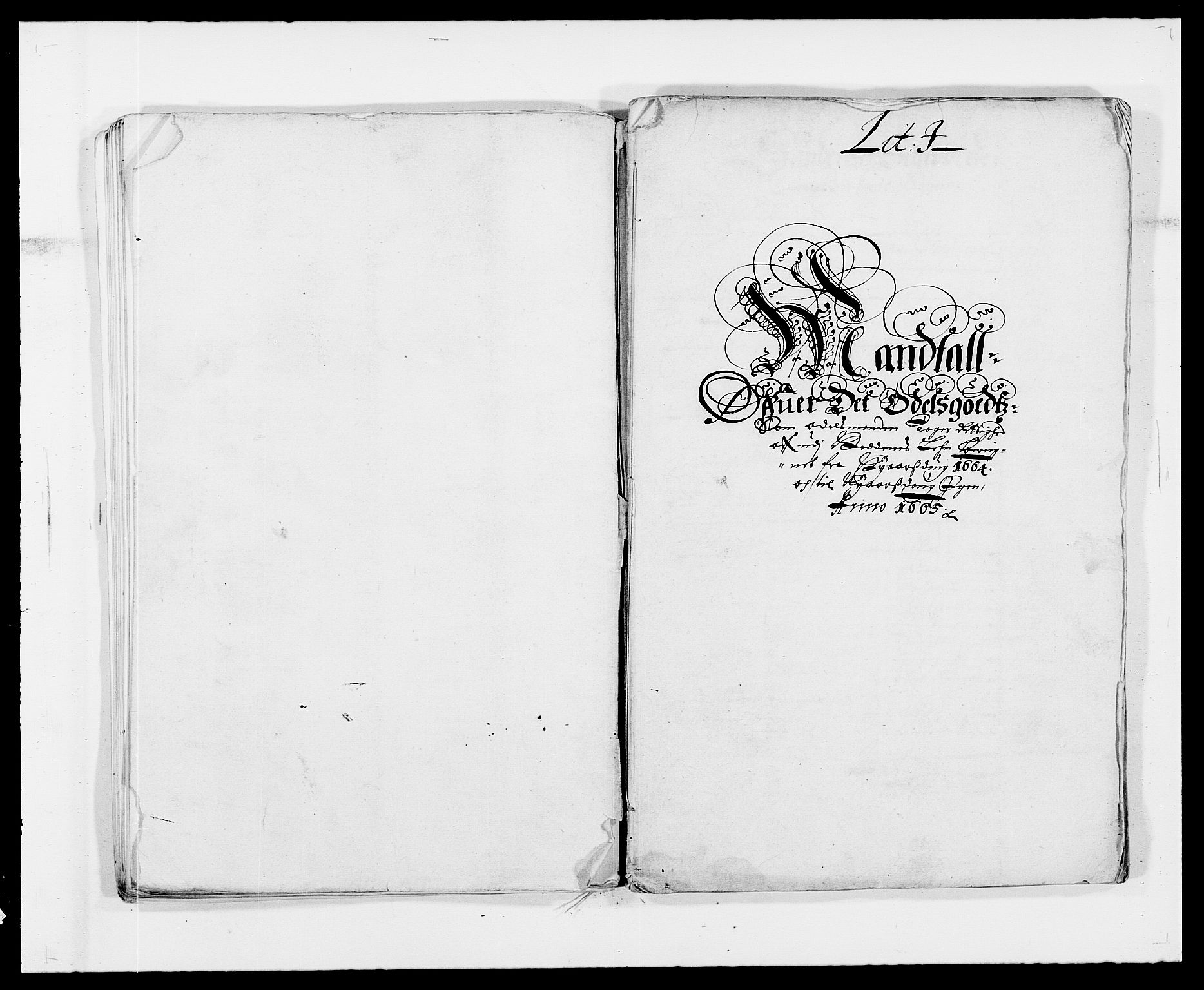 RA, Rentekammeret inntil 1814, Reviderte regnskaper, Fogderegnskap, R39/L2296: Fogderegnskap Nedenes, 1664-1666, s. 132