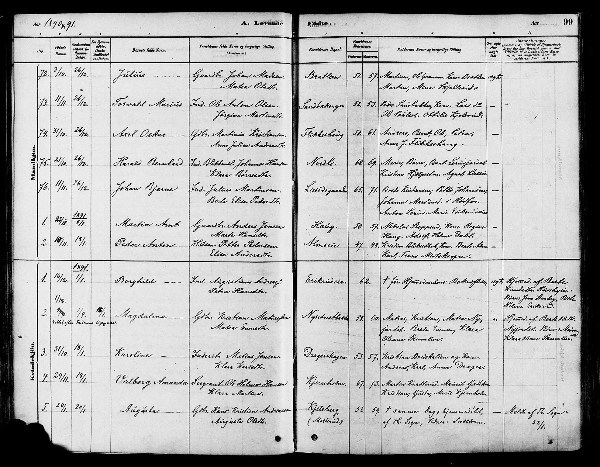 SAH, Vestre Toten prestekontor, H/Ha/Haa/L0009: Ministerialbok nr. 9, 1878-1894, s. 99