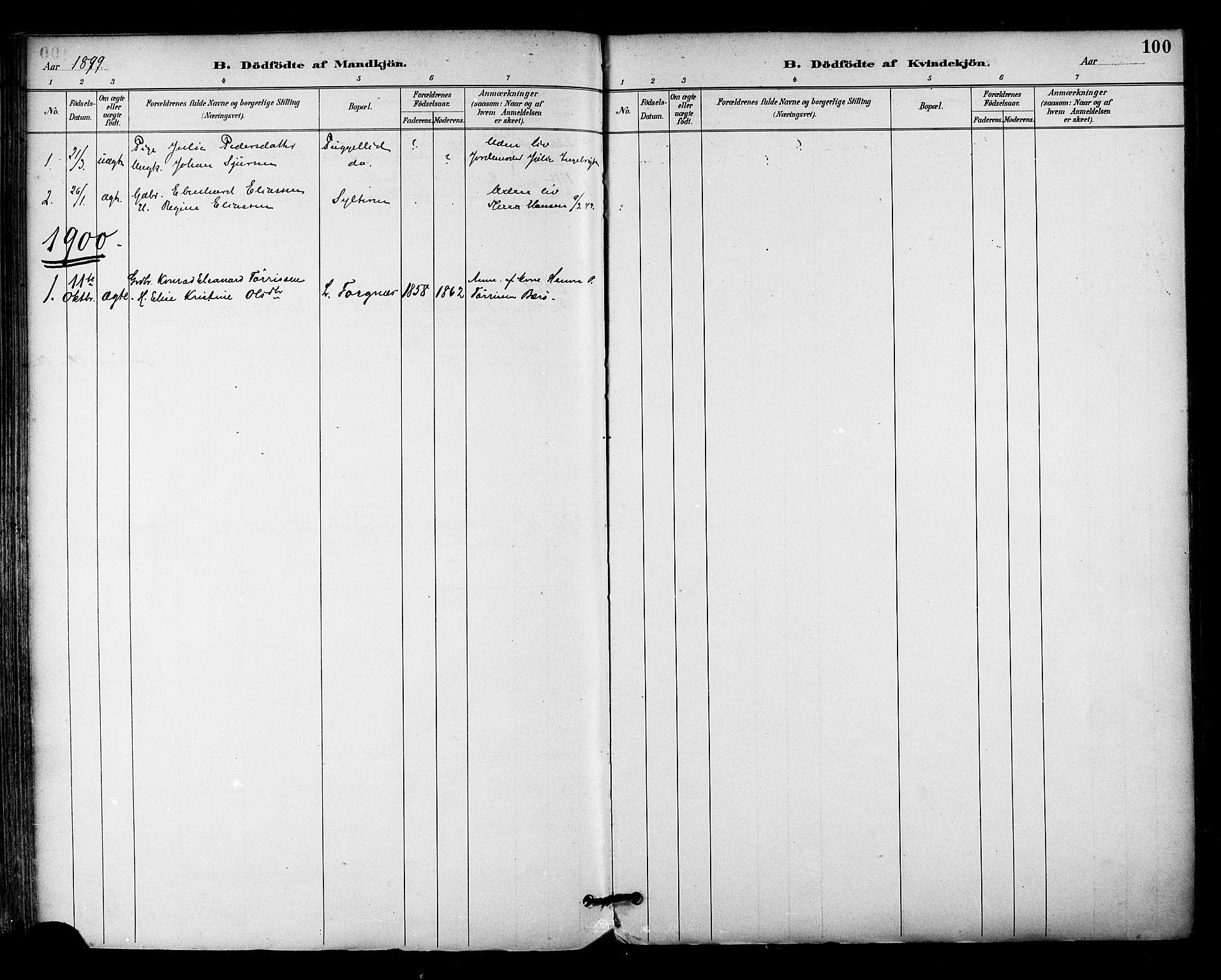 SAT, Ministerialprotokoller, klokkerbøker og fødselsregistre - Nordland, 813/L0200: Ministerialbok nr. 813A10, 1886-1900, s. 100