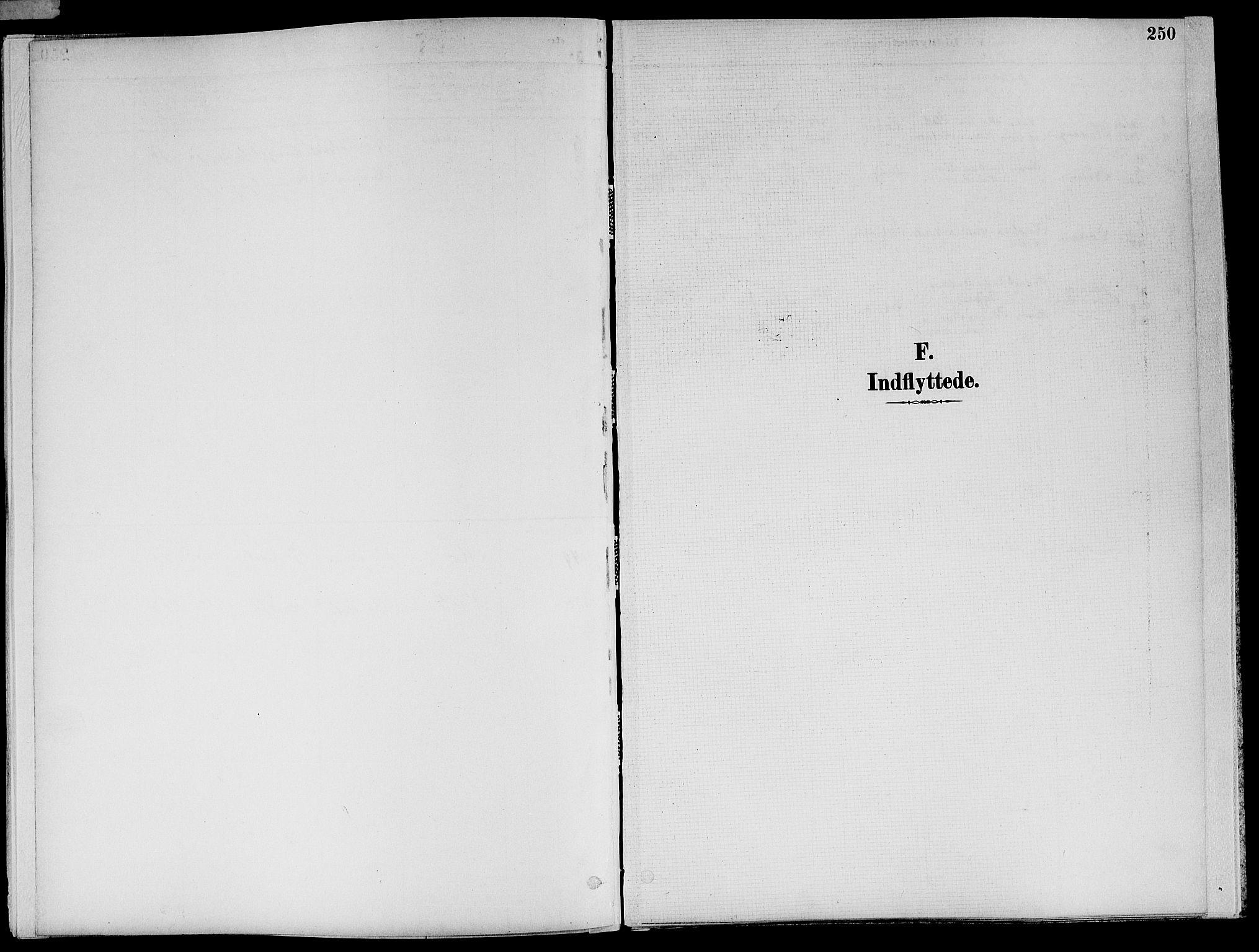 SAT, Ministerialprotokoller, klokkerbøker og fødselsregistre - Nord-Trøndelag, 773/L0617: Ministerialbok nr. 773A08, 1887-1910, s. 250