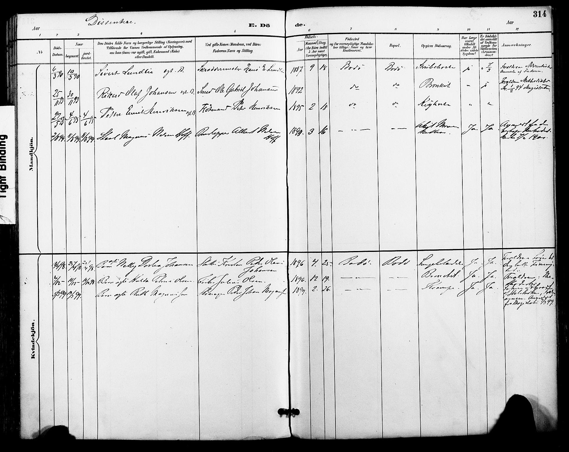 SAT, Ministerialprotokoller, klokkerbøker og fødselsregistre - Nordland, 801/L0010: Ministerialbok nr. 801A10, 1888-1899, s. 314