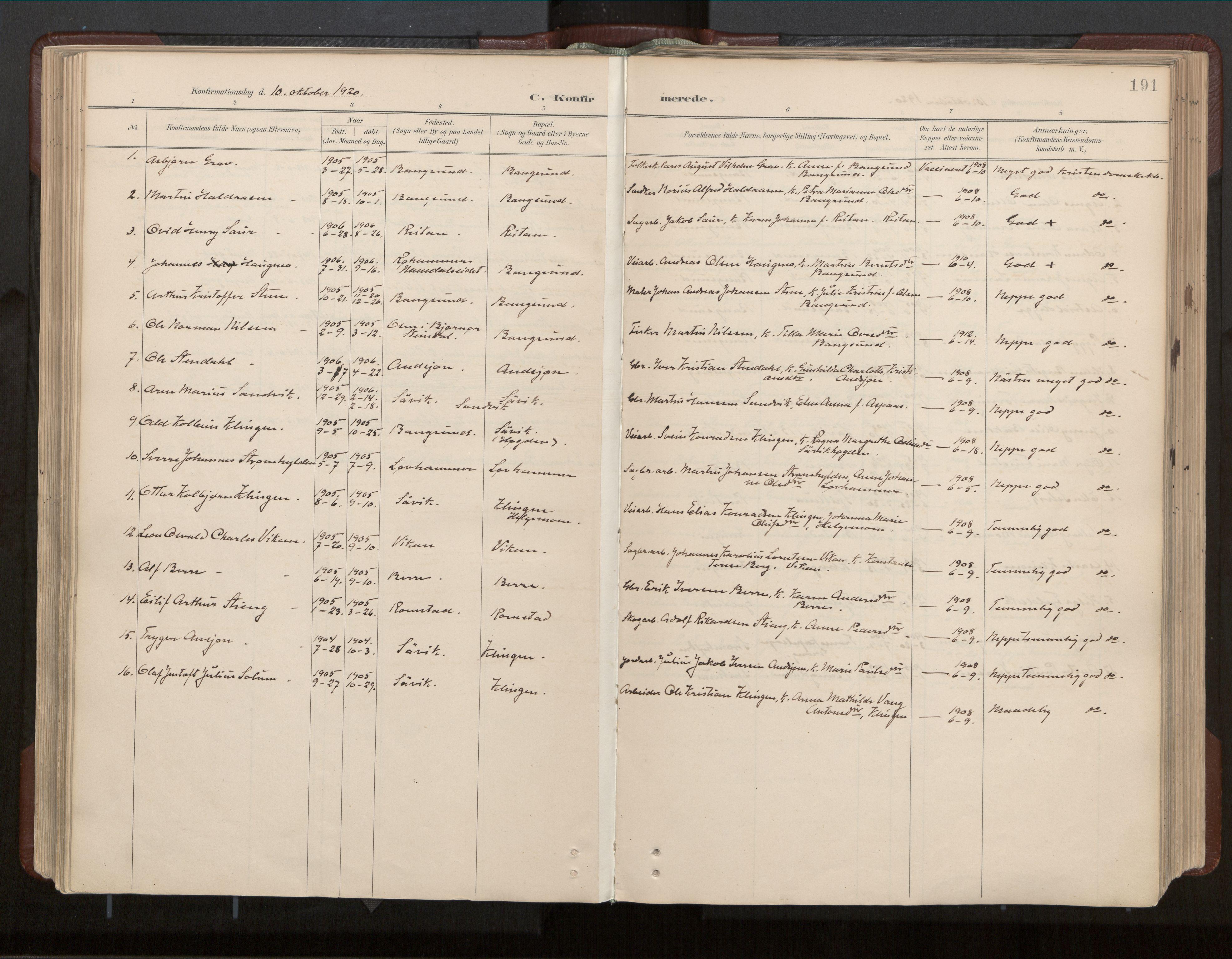SAT, Ministerialprotokoller, klokkerbøker og fødselsregistre - Nord-Trøndelag, 770/L0589: Ministerialbok nr. 770A03, 1887-1929, s. 191