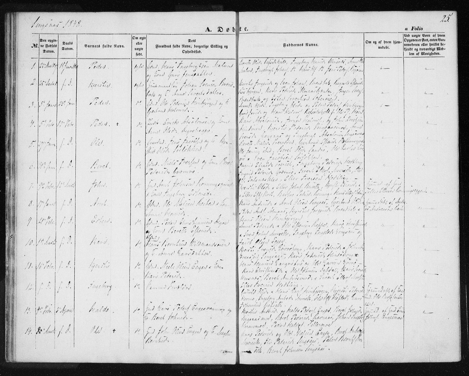 SAT, Ministerialprotokoller, klokkerbøker og fødselsregistre - Sør-Trøndelag, 685/L0964: Ministerialbok nr. 685A06 /2, 1846-1859, s. 25