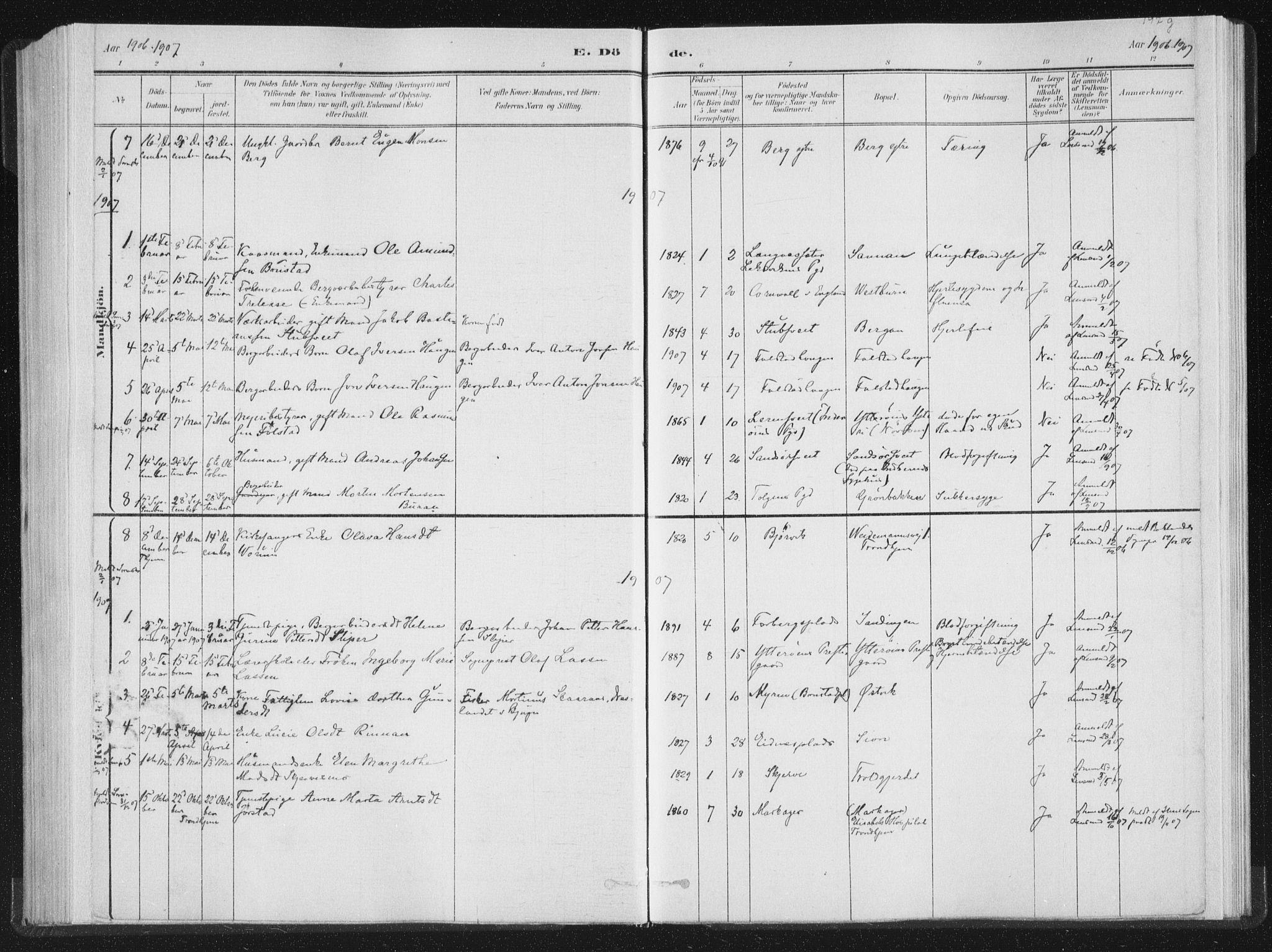SAT, Ministerialprotokoller, klokkerbøker og fødselsregistre - Nord-Trøndelag, 722/L0220: Ministerialbok nr. 722A07, 1881-1908, s. 197g