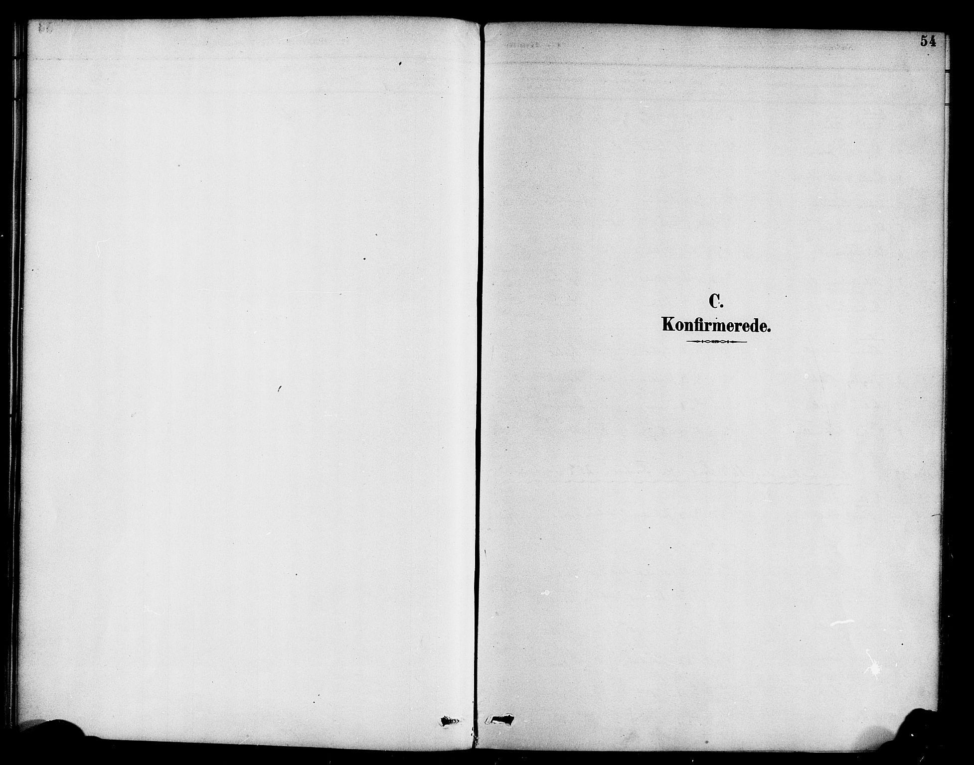 SAB, Hyllestad Sokneprestembete, Ministerialbok nr. B 1, 1886-1904, s. 54