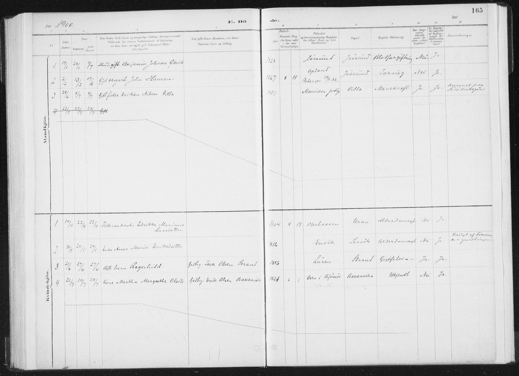 SAT, Ministerialprotokoller, klokkerbøker og fødselsregistre - Nord-Trøndelag, 771/L0597: Ministerialbok nr. 771A04, 1885-1910, s. 165