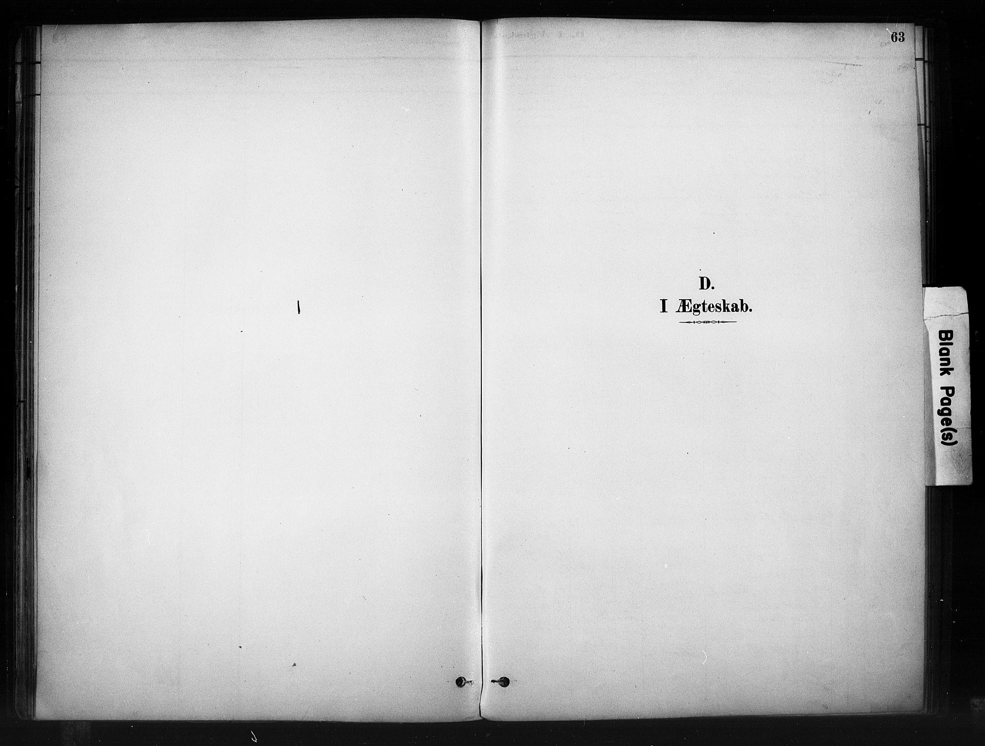 SAH, Nord-Aurdal prestekontor, Ministerialbok nr. 10, 1883-1896, s. 63