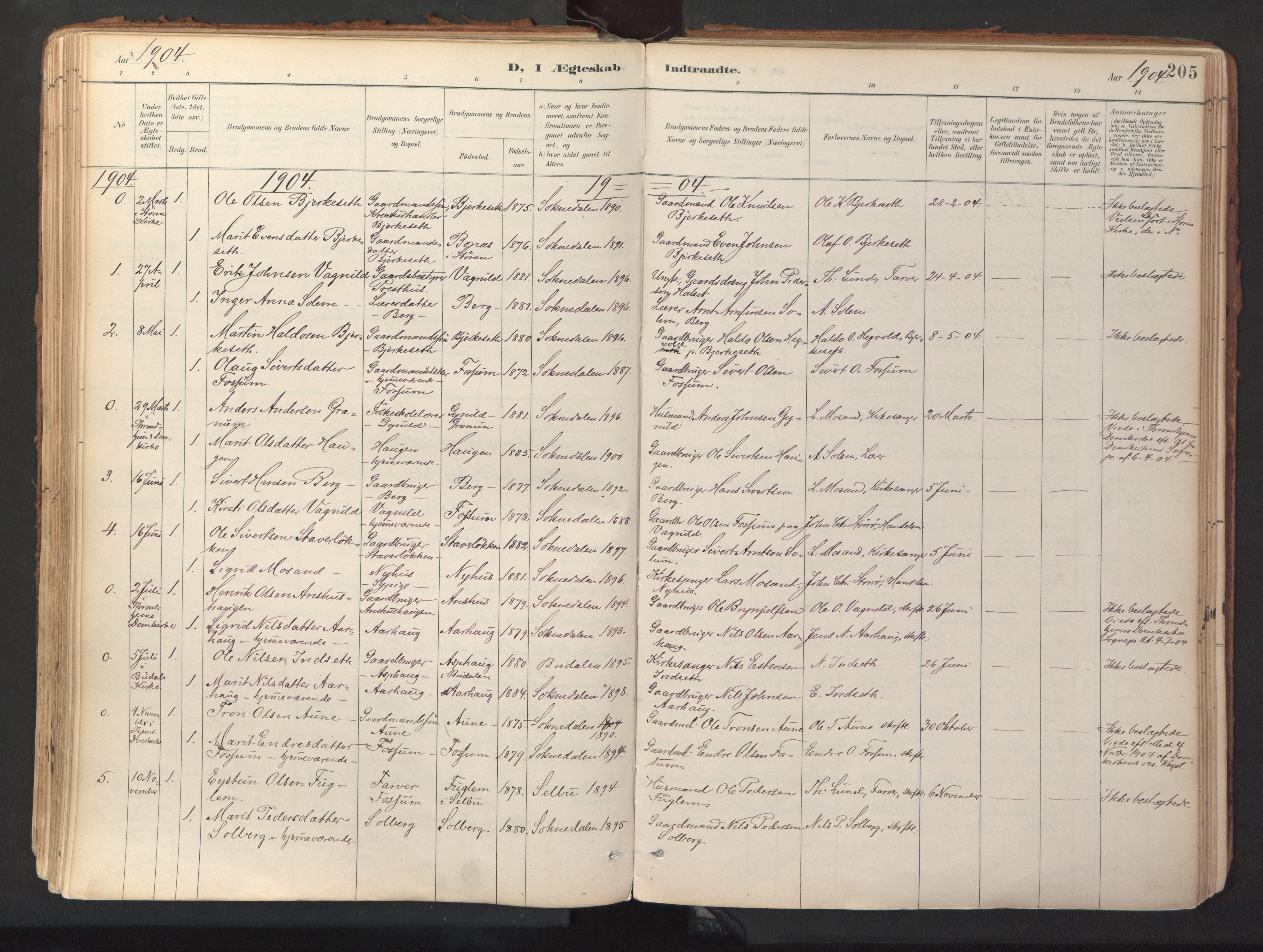 SAT, Ministerialprotokoller, klokkerbøker og fødselsregistre - Sør-Trøndelag, 689/L1041: Ministerialbok nr. 689A06, 1891-1923, s. 205
