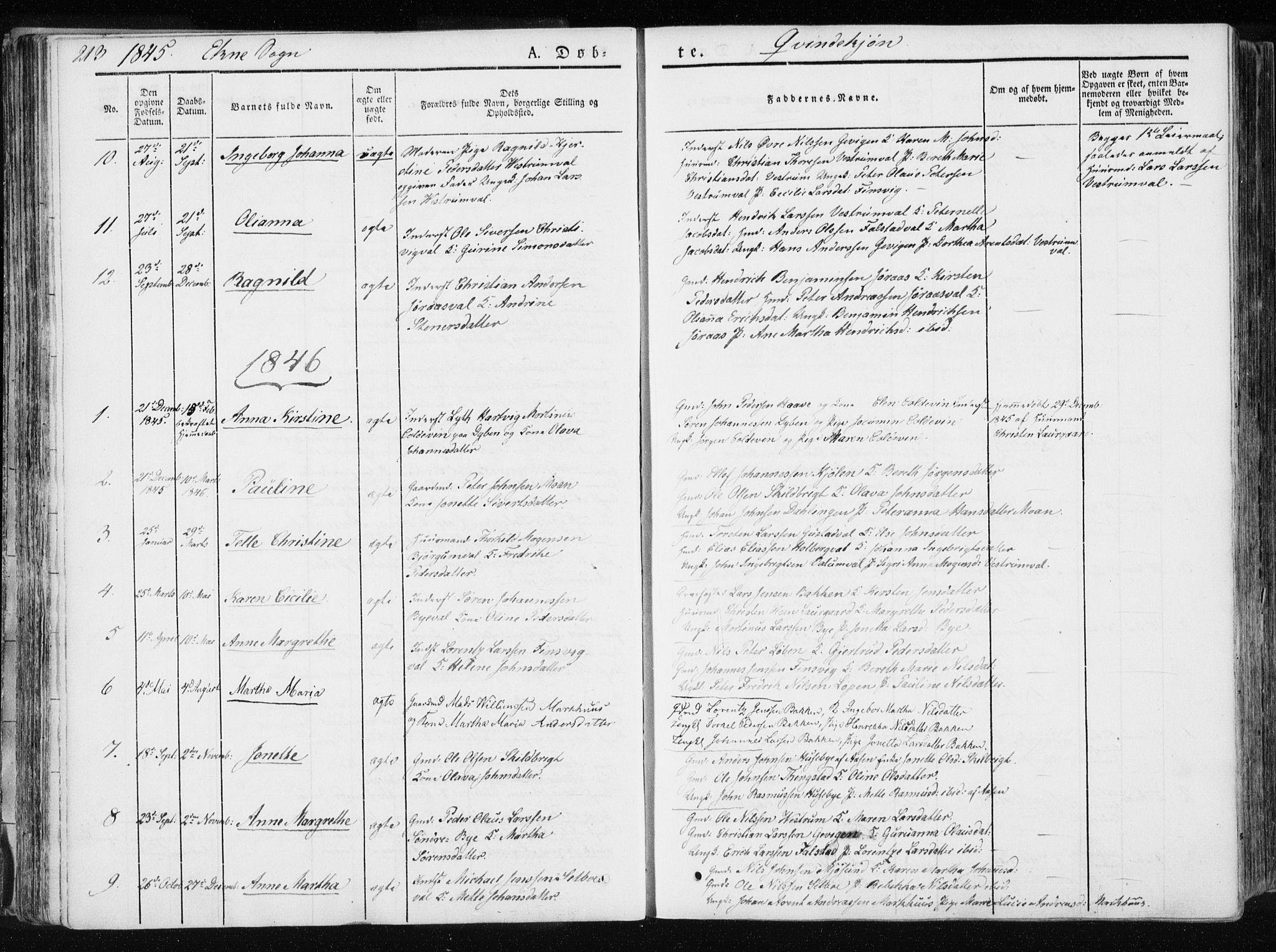 SAT, Ministerialprotokoller, klokkerbøker og fødselsregistre - Nord-Trøndelag, 717/L0154: Ministerialbok nr. 717A06 /2, 1836-1849, s. 213