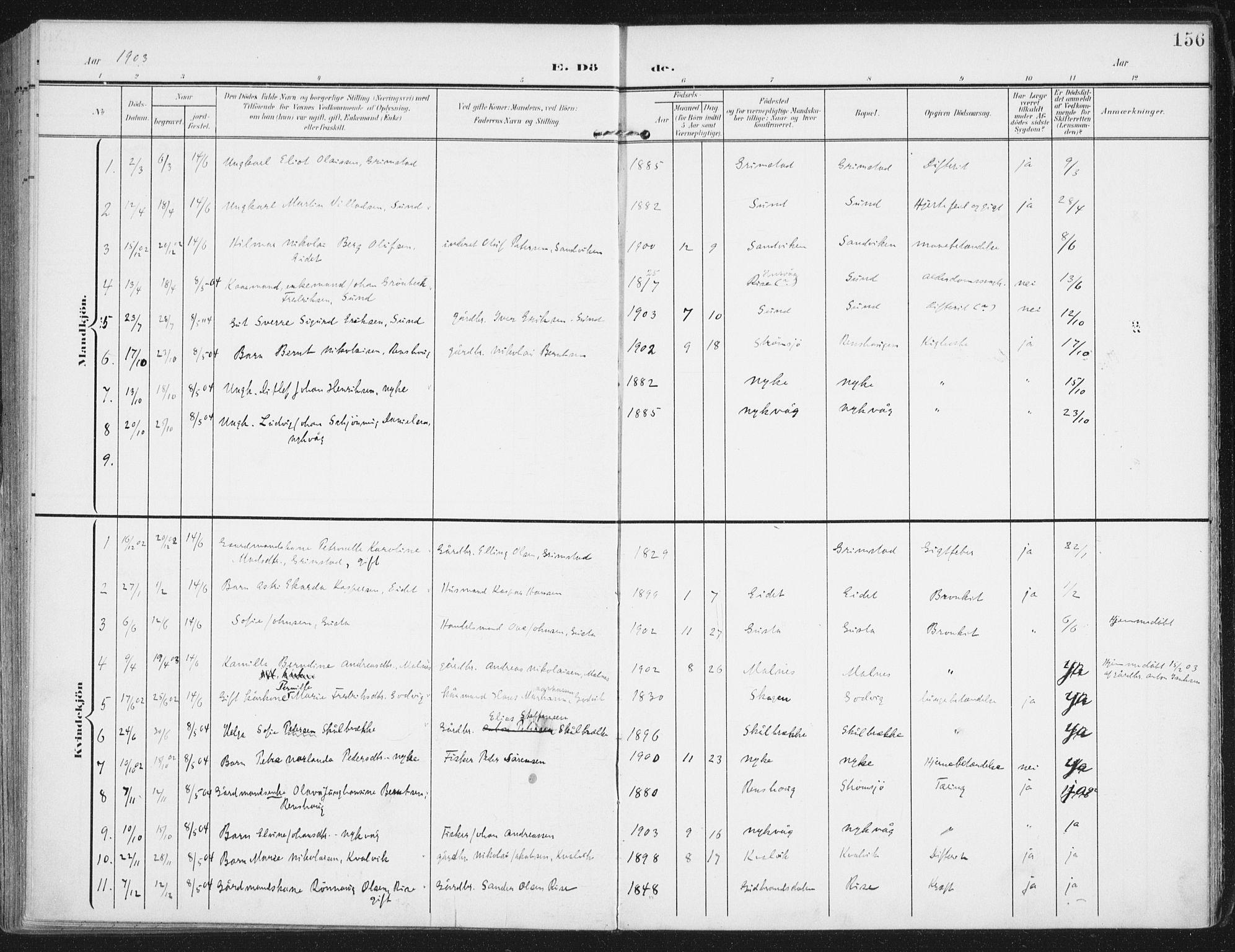 SAT, Ministerialprotokoller, klokkerbøker og fødselsregistre - Nordland, 892/L1321: Ministerialbok nr. 892A02, 1902-1918, s. 156