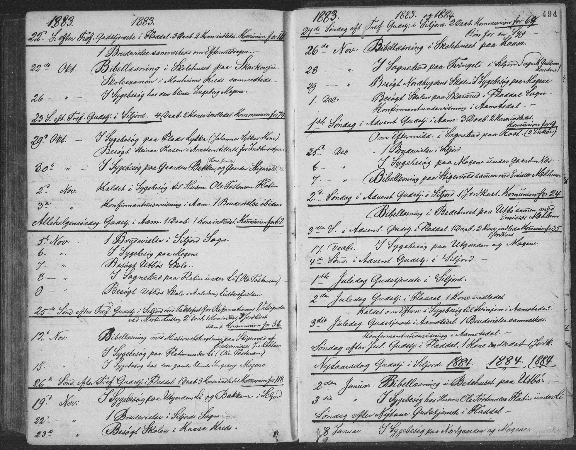 SAKO, Seljord kirkebøker, F/Fa/L0014: Ministerialbok nr. I 14, 1877-1886, s. 494