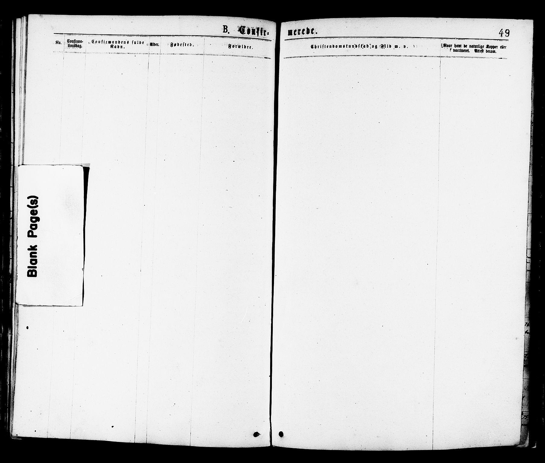 SAT, Ministerialprotokoller, klokkerbøker og fødselsregistre - Sør-Trøndelag, 659/L0738: Ministerialbok nr. 659A08, 1876-1878, s. 49
