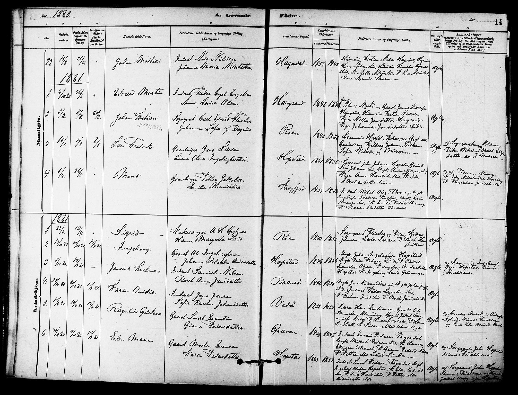 SAT, Ministerialprotokoller, klokkerbøker og fødselsregistre - Sør-Trøndelag, 657/L0707: Ministerialbok nr. 657A08, 1879-1893, s. 14