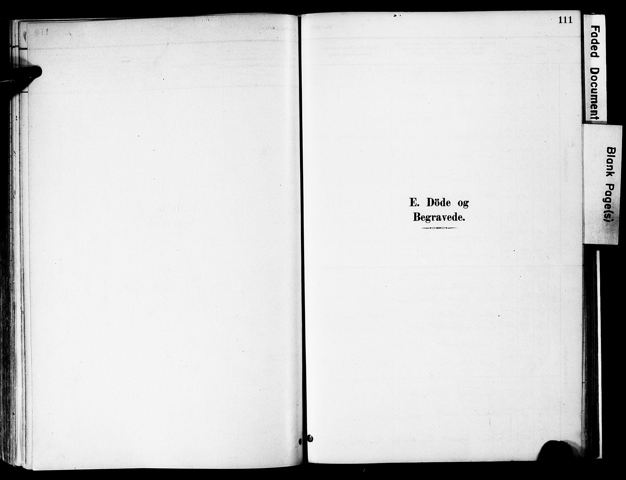 SAH, Vestre Slidre prestekontor, Ministerialbok nr. 6, 1881-1912, s. 111