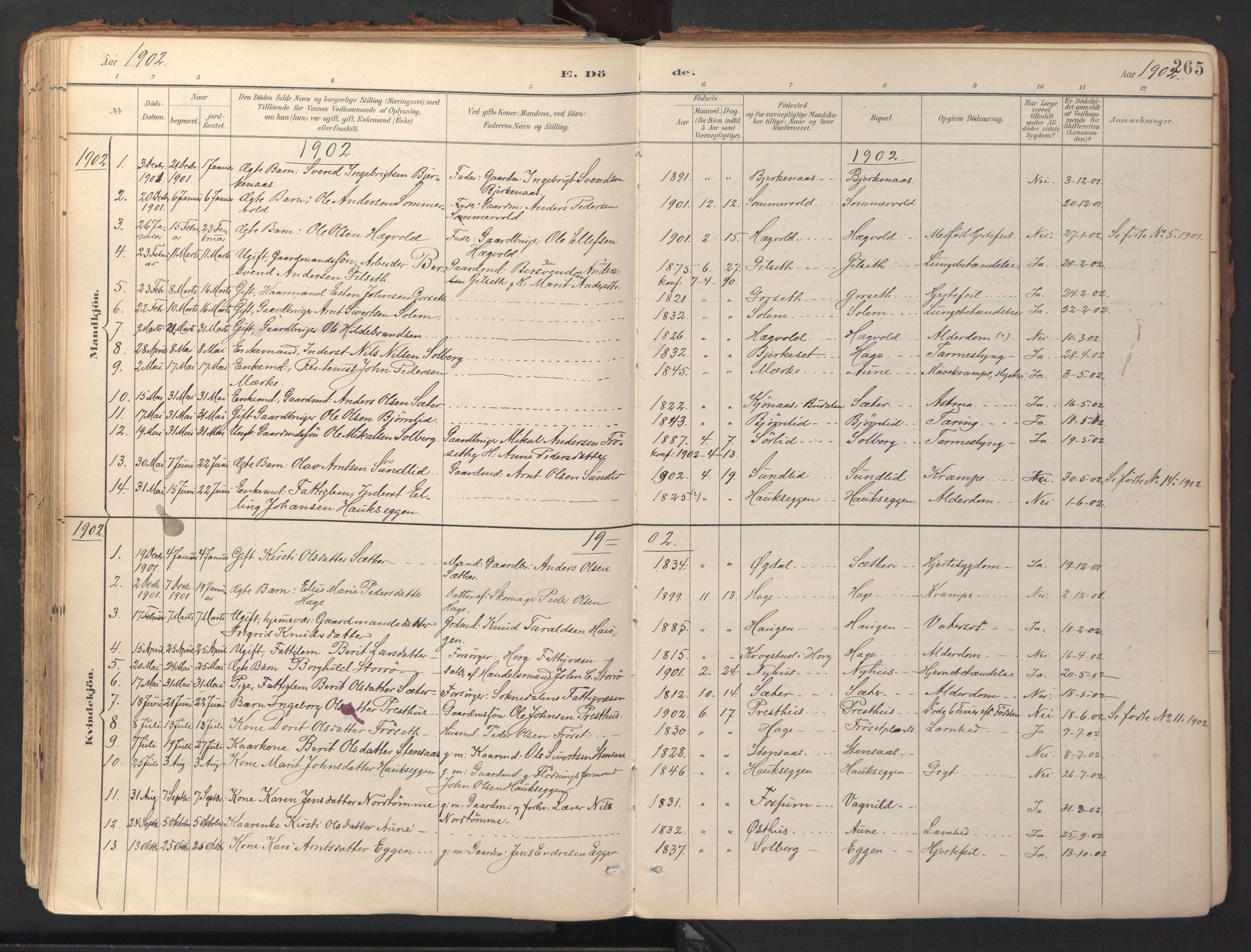 SAT, Ministerialprotokoller, klokkerbøker og fødselsregistre - Sør-Trøndelag, 689/L1041: Ministerialbok nr. 689A06, 1891-1923, s. 265