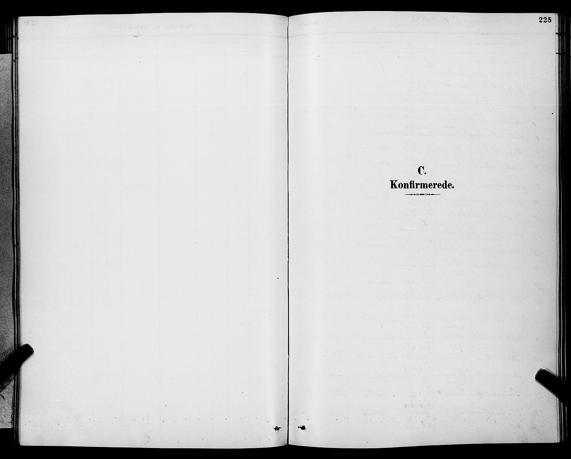 SAKO, Gjerpen kirkebøker, G/Ga/L0002: Klokkerbok nr. I 2, 1883-1900, s. 225