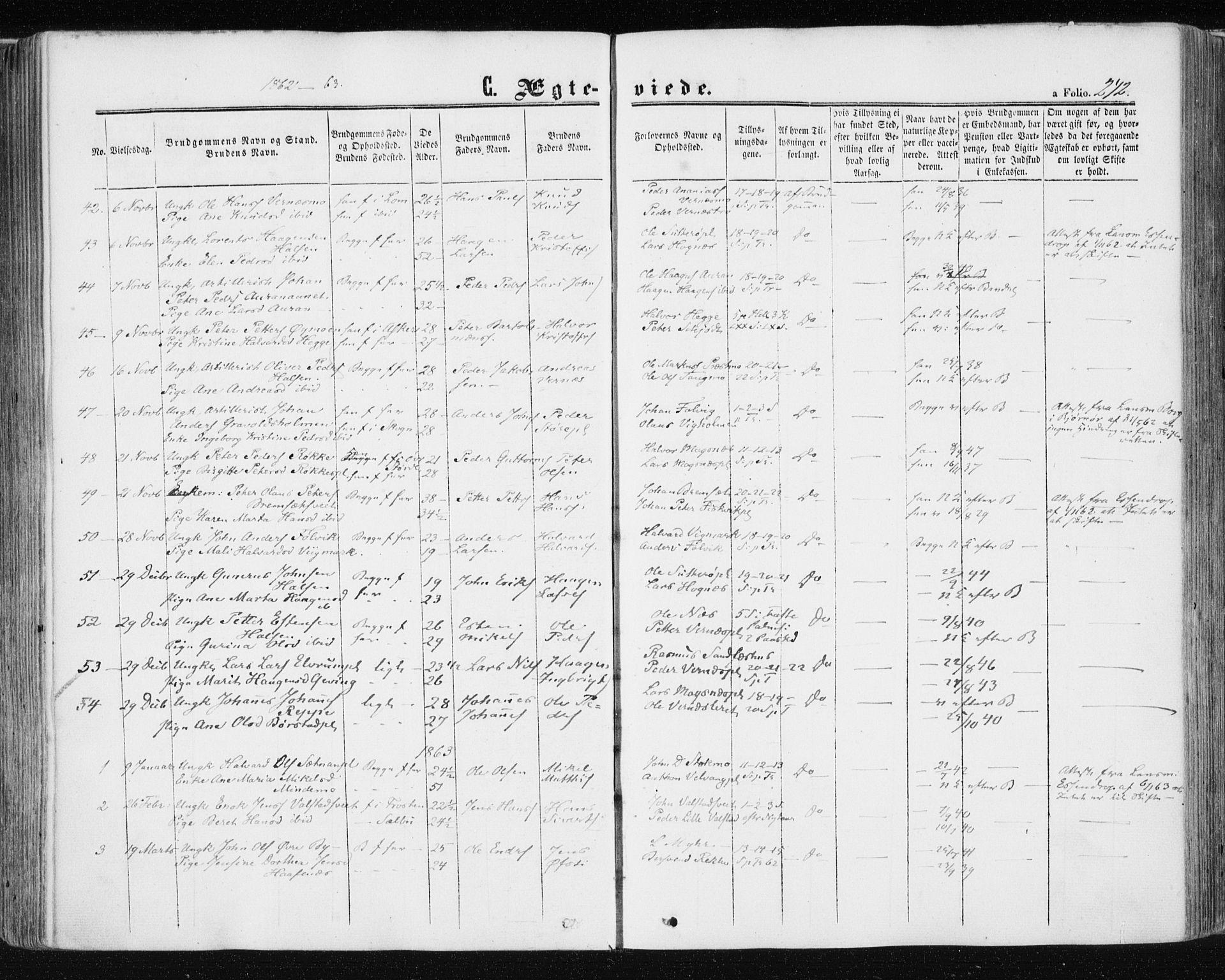 SAT, Ministerialprotokoller, klokkerbøker og fødselsregistre - Nord-Trøndelag, 709/L0075: Ministerialbok nr. 709A15, 1859-1870, s. 242