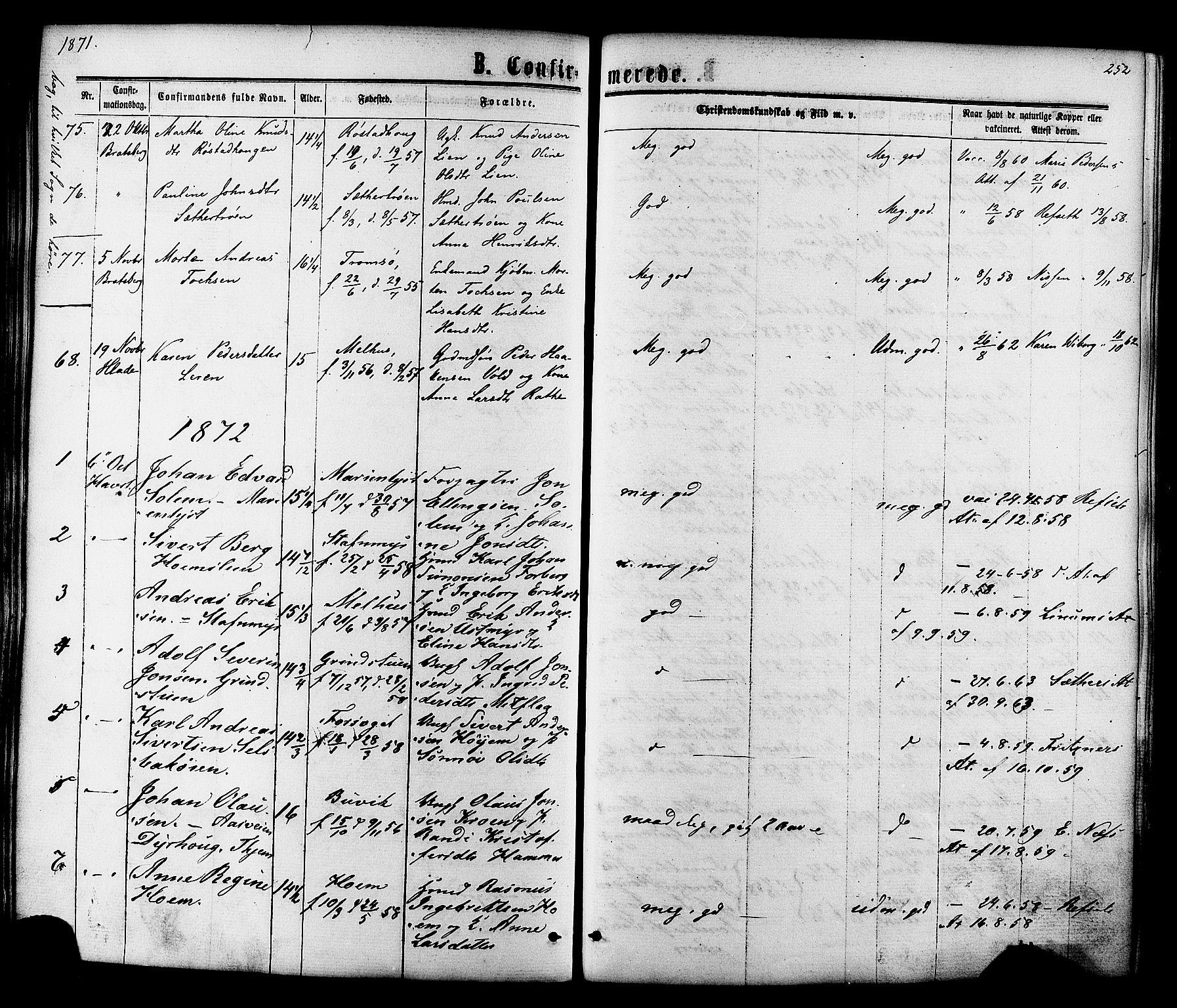 SAT, Ministerialprotokoller, klokkerbøker og fødselsregistre - Sør-Trøndelag, 606/L0293: Ministerialbok nr. 606A08, 1866-1877, s. 252