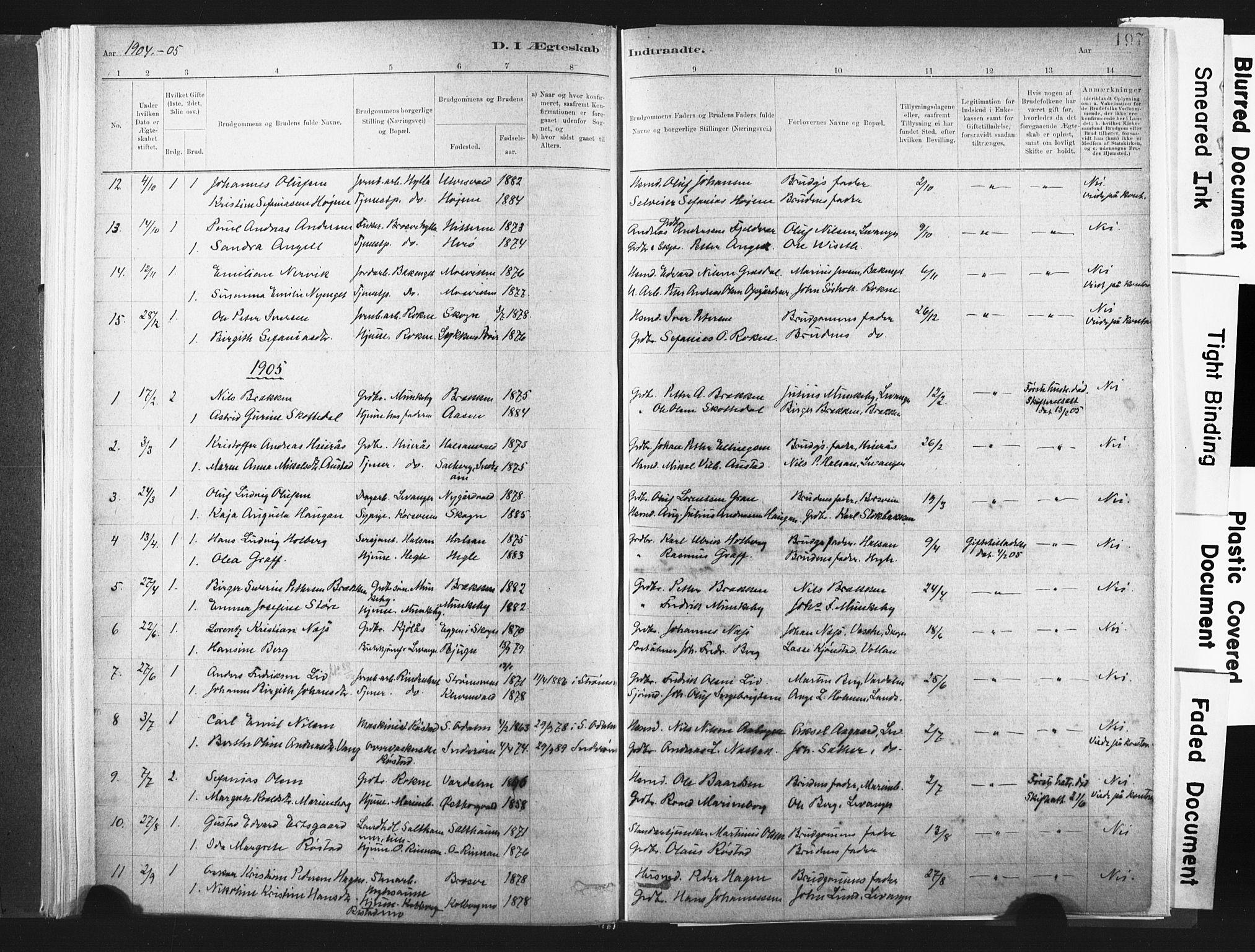 SAT, Ministerialprotokoller, klokkerbøker og fødselsregistre - Nord-Trøndelag, 721/L0207: Ministerialbok nr. 721A02, 1880-1911, s. 197
