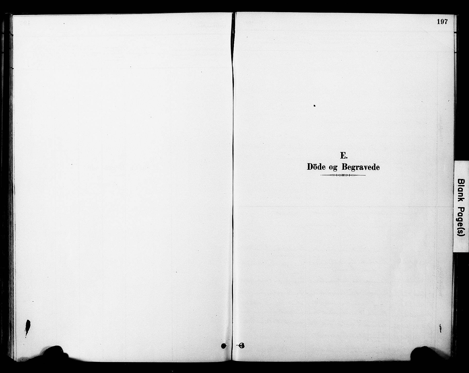 SAT, Ministerialprotokoller, klokkerbøker og fødselsregistre - Nord-Trøndelag, 757/L0505: Ministerialbok nr. 757A01, 1882-1904, s. 197