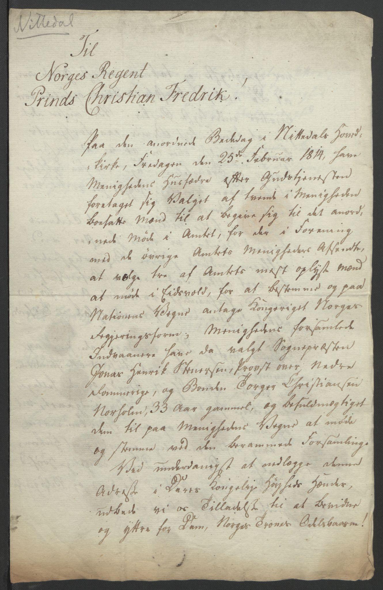 RA, Statsrådssekretariatet, D/Db/L0007: Fullmakter for Eidsvollsrepresentantene i 1814. , 1814, s. 194